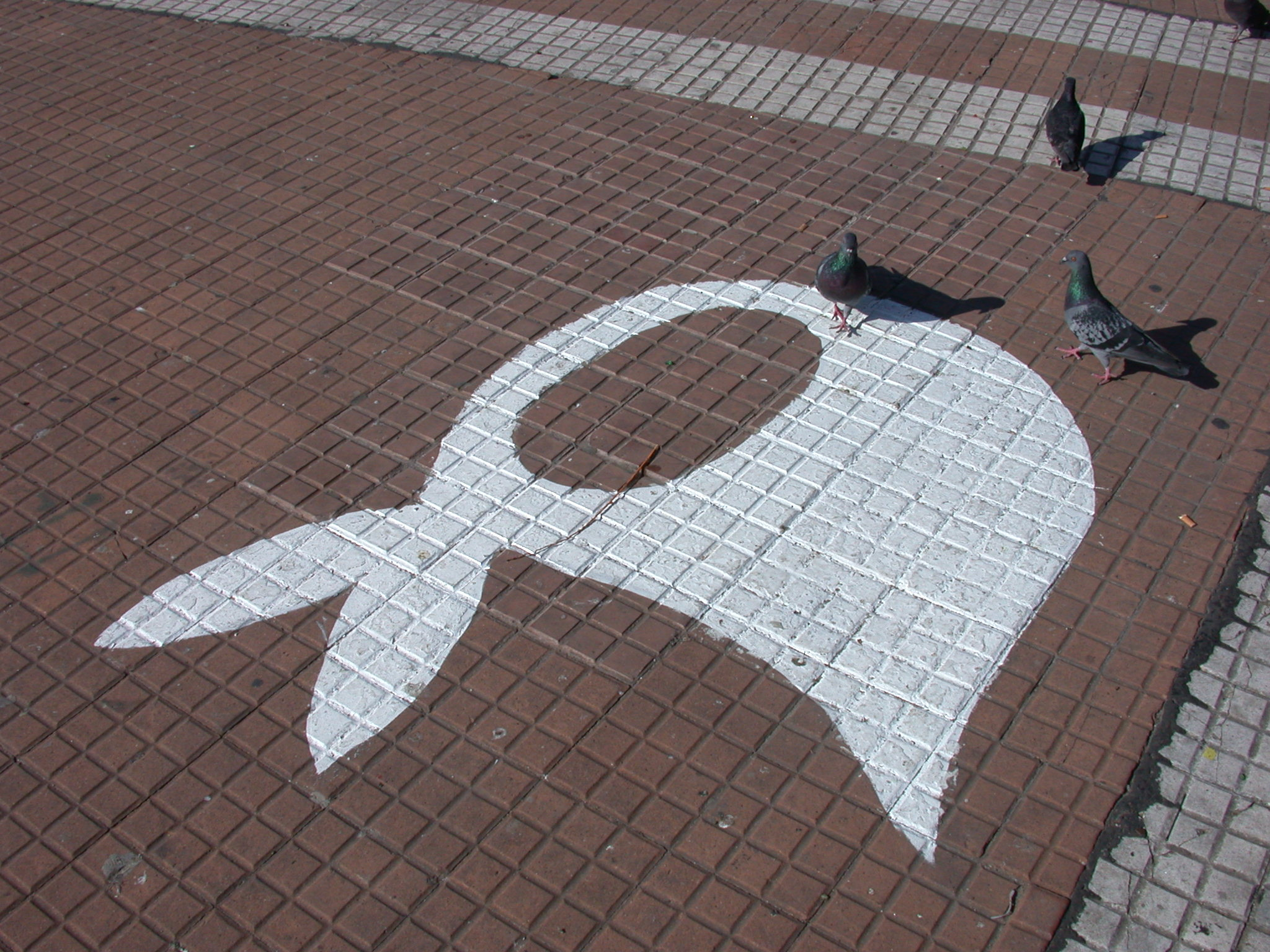 Symbol of Madres on Pavement, Plaza de Mayo, Buenos Aires, Argentina