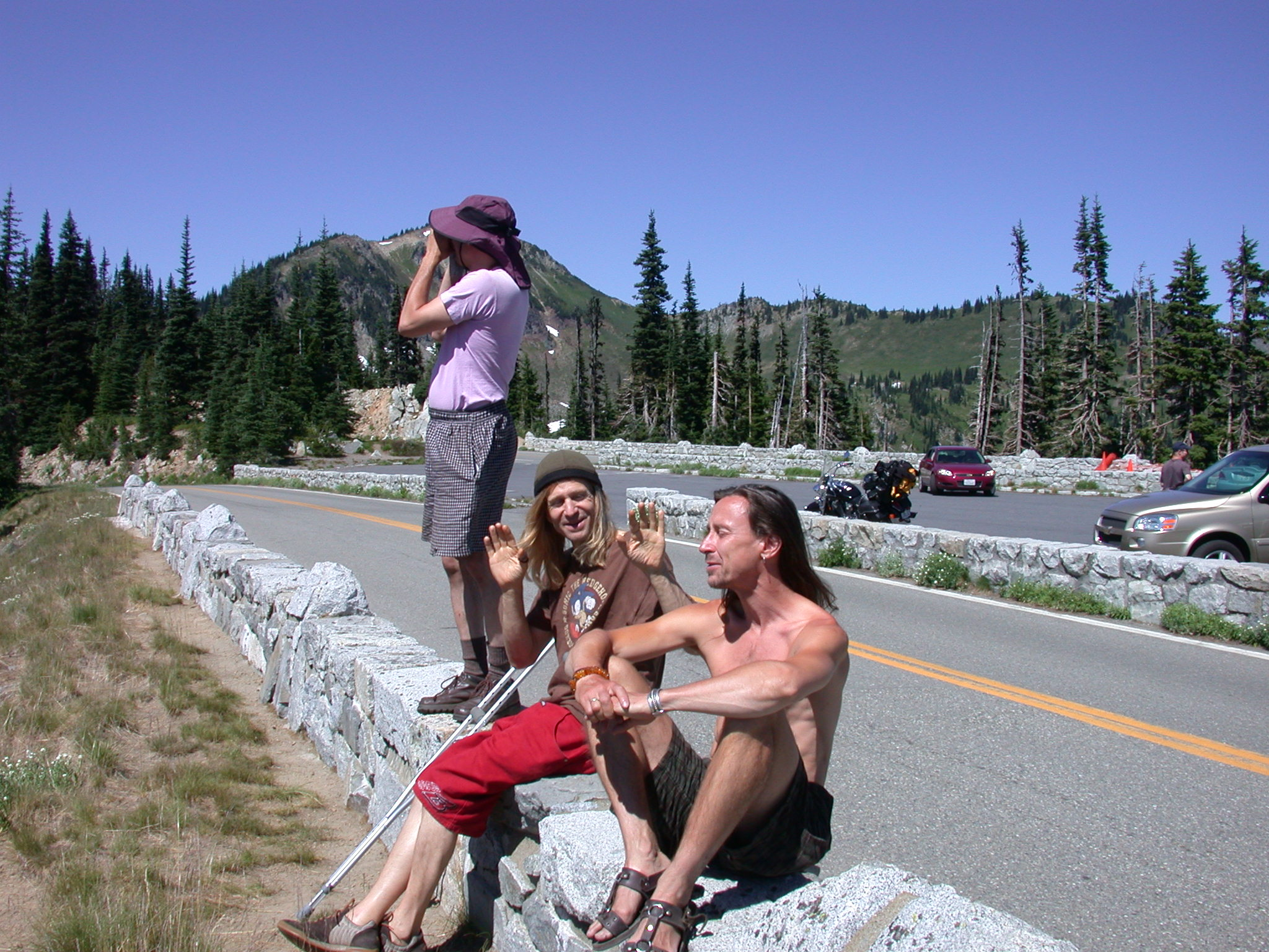 Mugwort, Kirby, and Franz at Mount Rainier Lookout