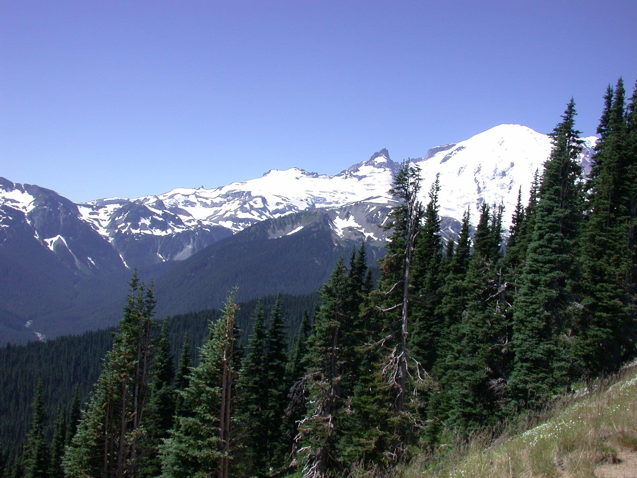 Snowy Peaks Near Mount Rainier