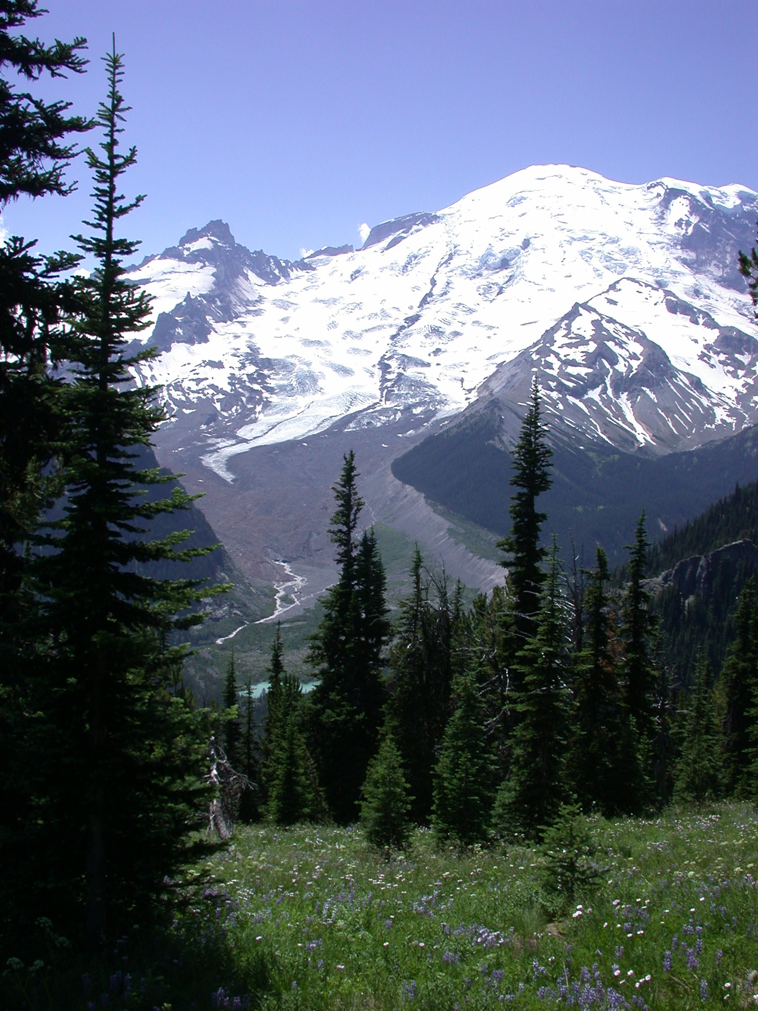 Mount Rainier With Glacier View