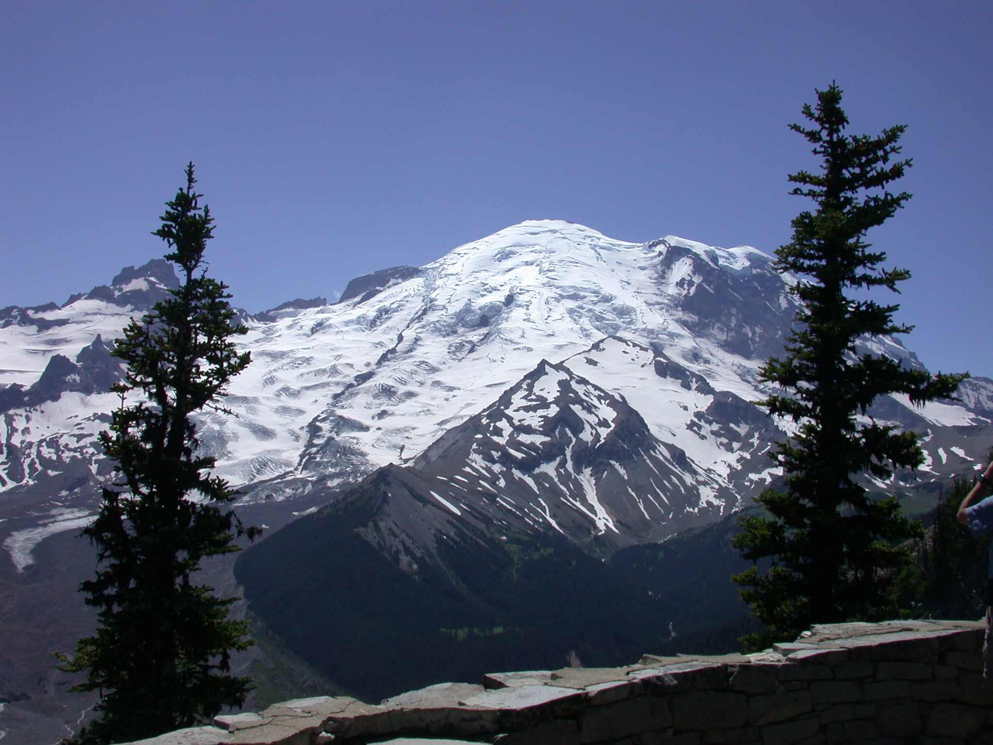 Mount Rainier Peak From Lower Trail to Burroughs