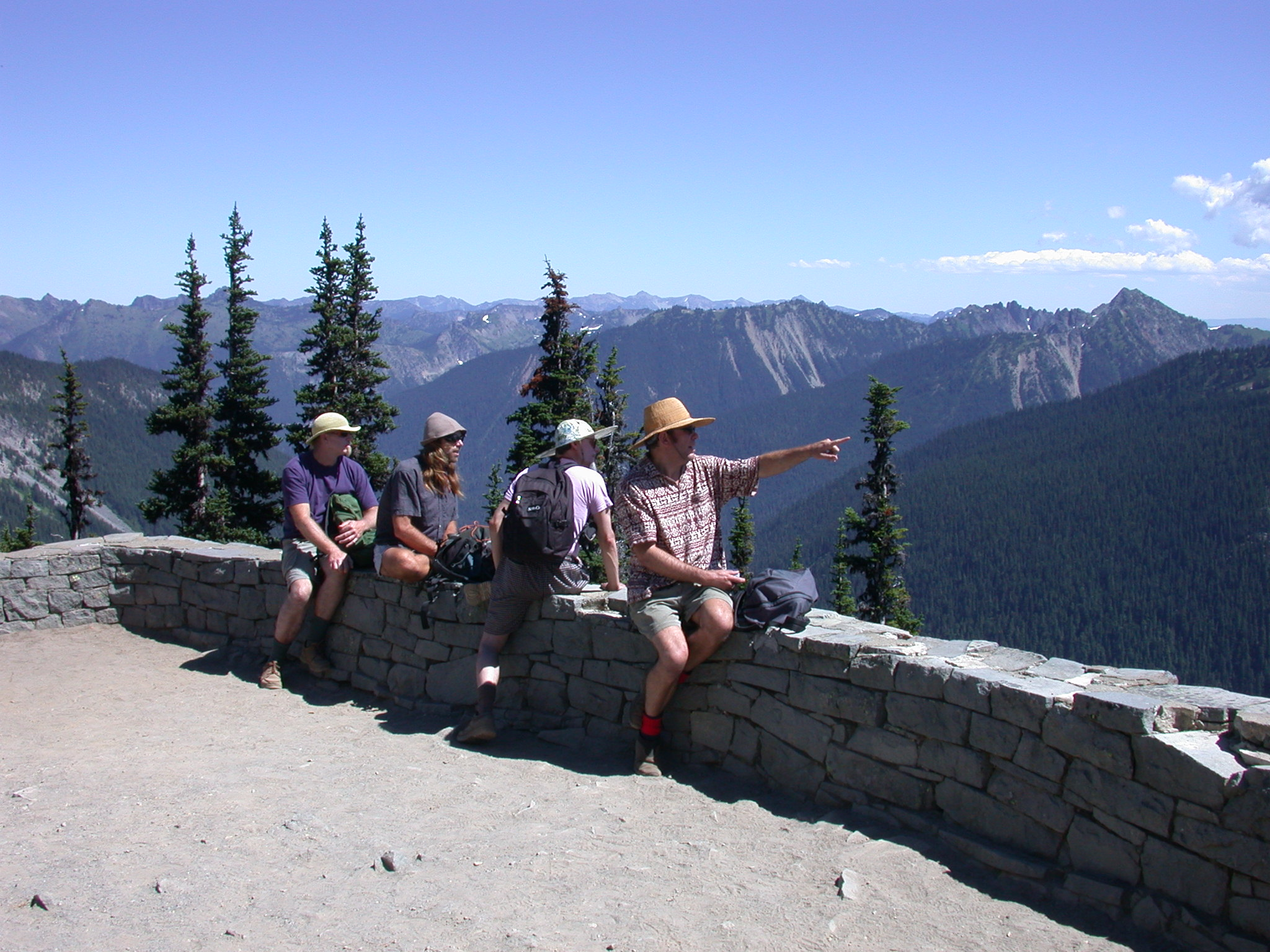 Dazzle, Mugwort, Sierra, and Tusk on Burroughs Trail Outlook of Mount Rainier