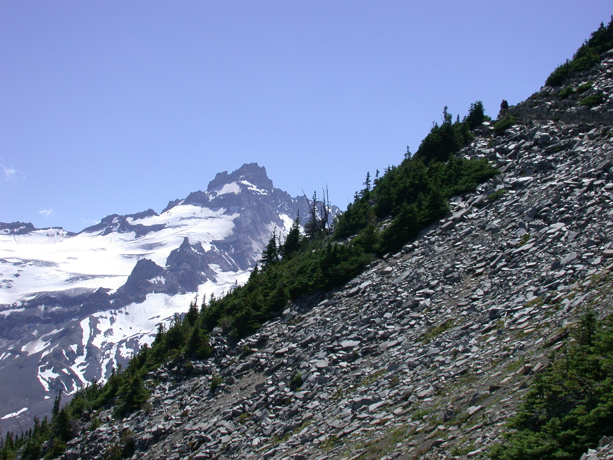 Rock Slide on Lower Trail to Burroughs Peaks on Mount Rainier