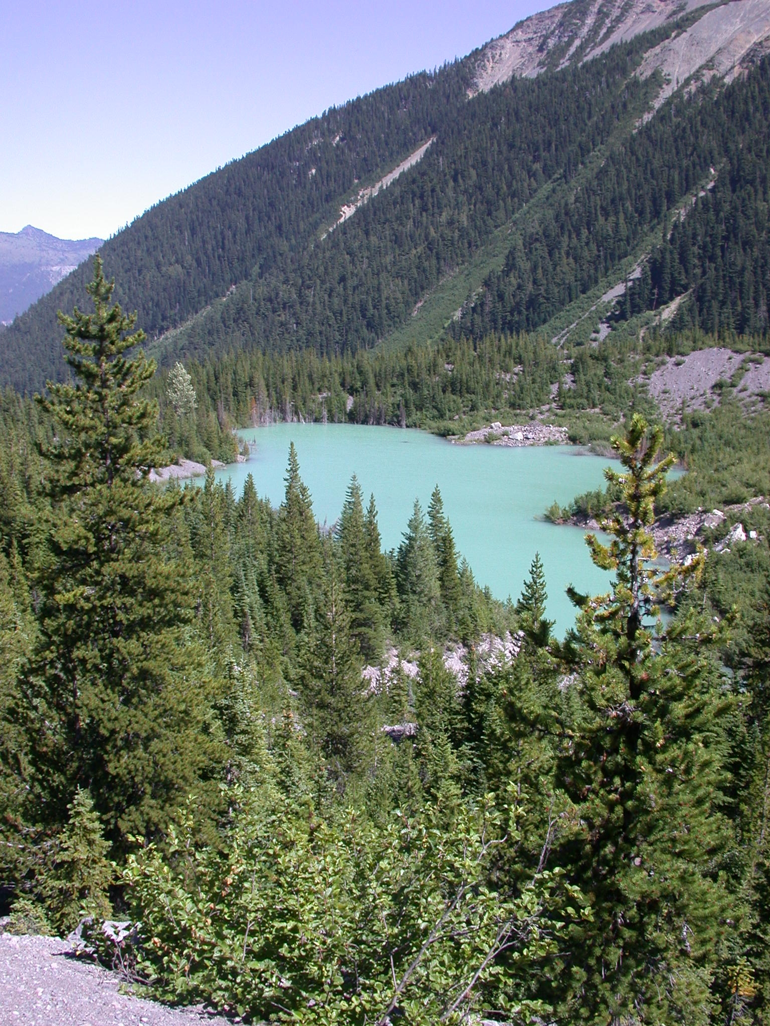 Glacial Lake From Glacier Trail on Mount Rainier