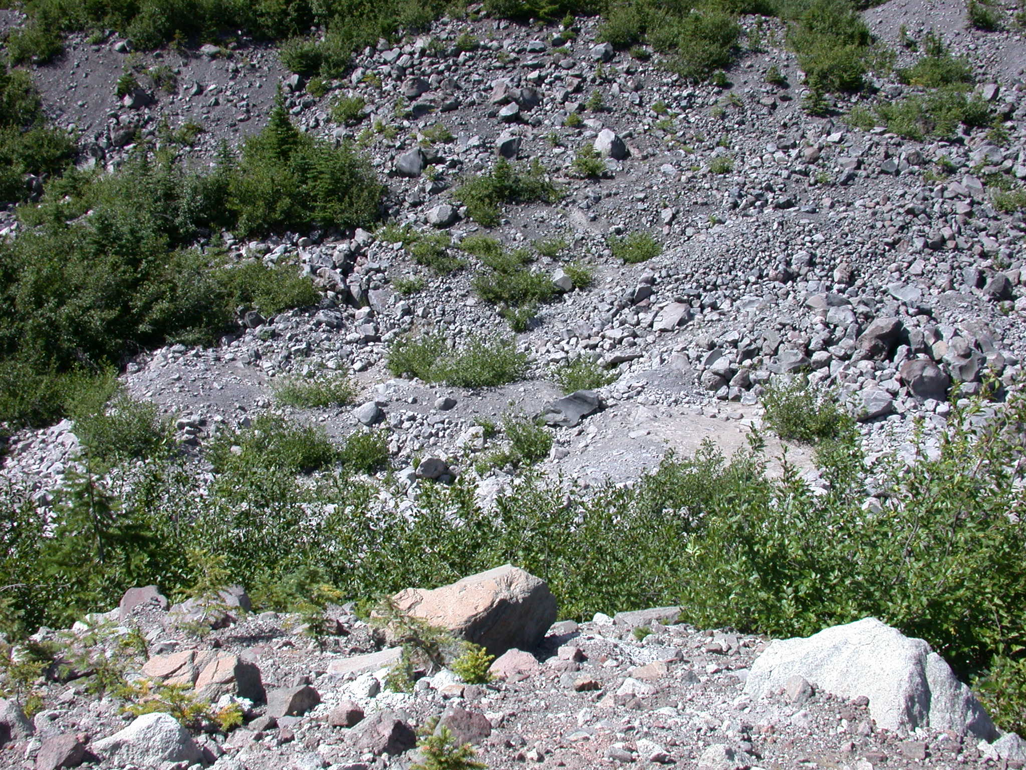 Change in Rock Deposits in Glacial Canyon of Mount Rainier