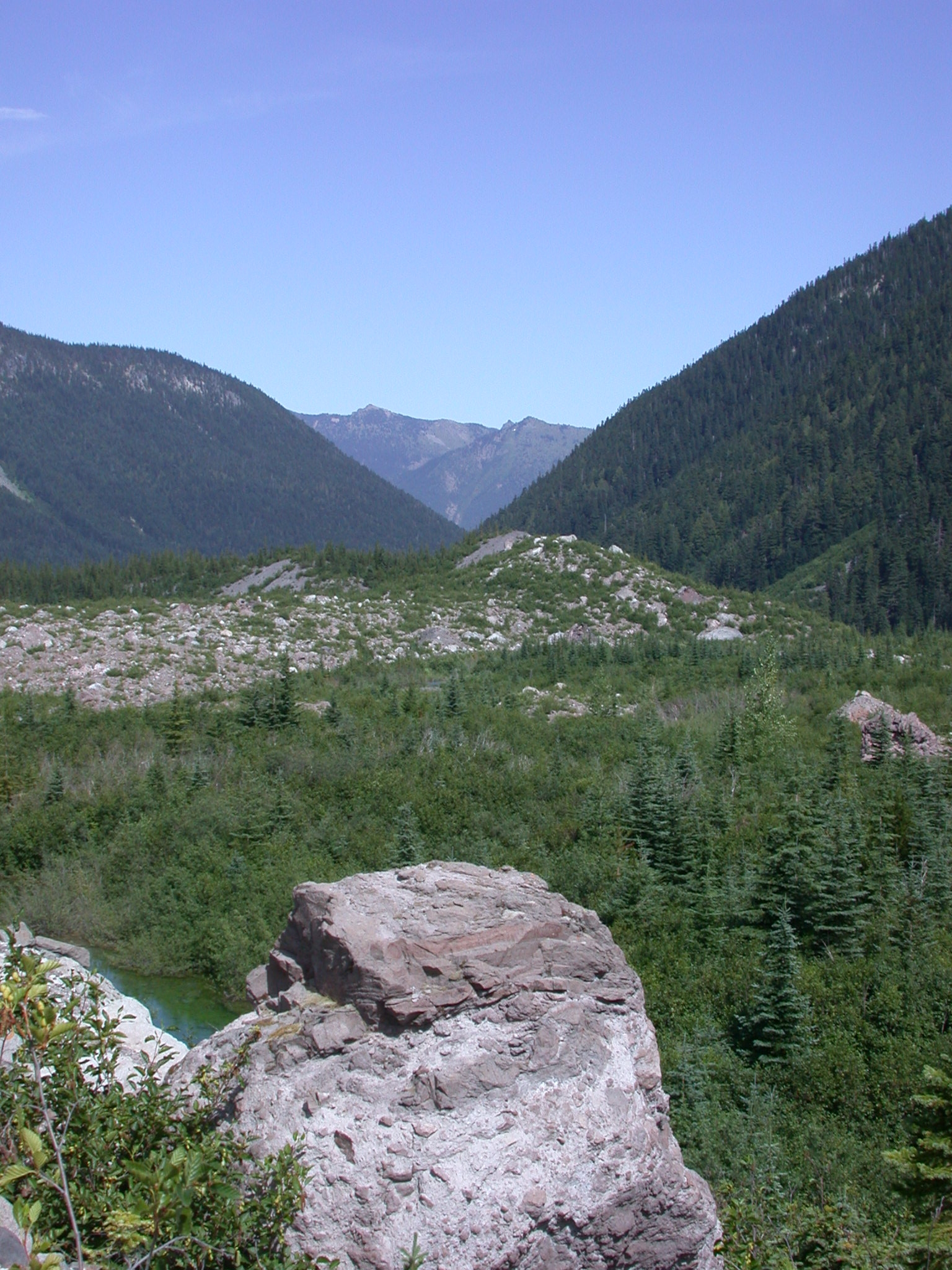 Glacial Valley on Mount Rainier