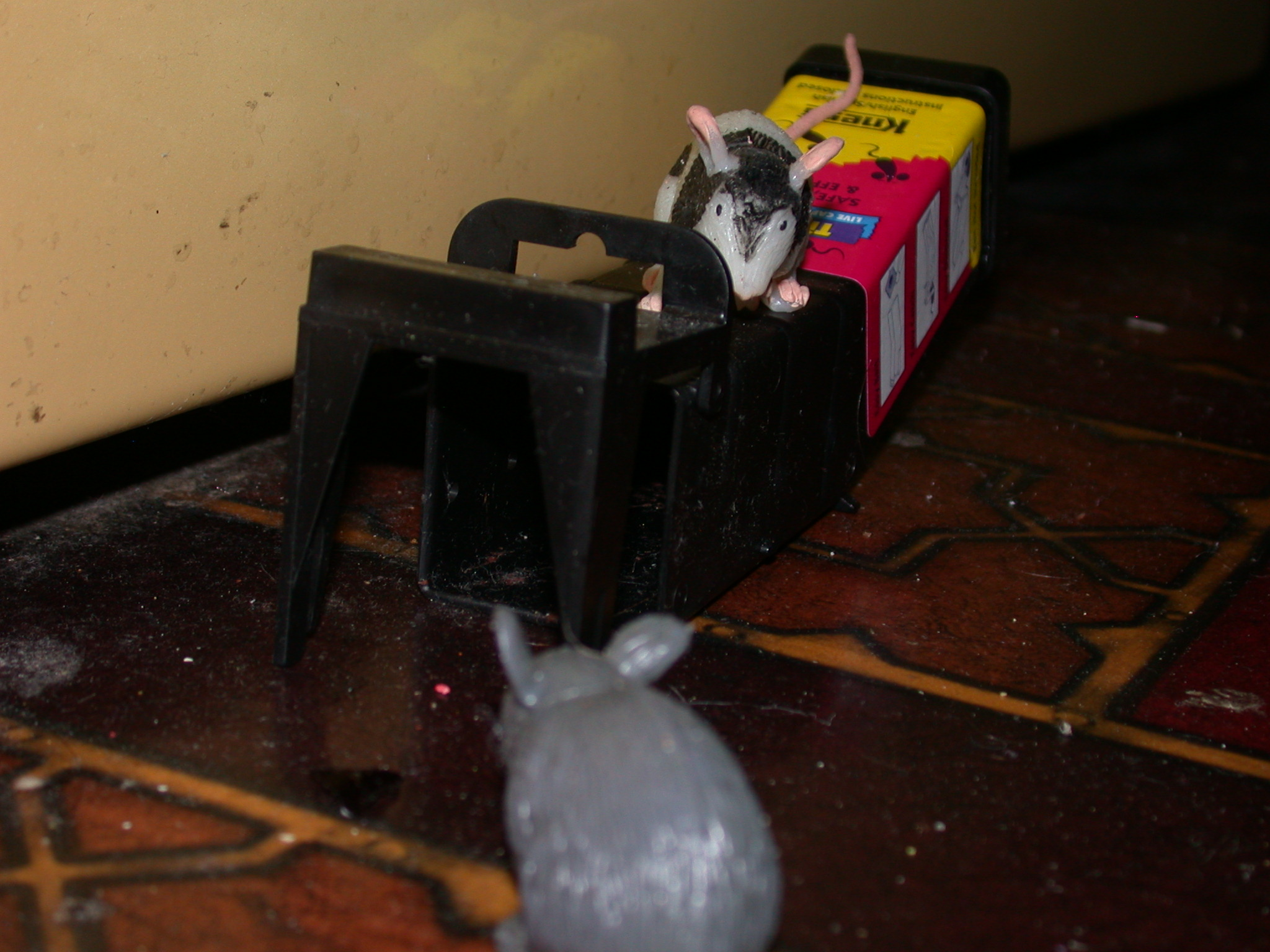 Watch Out for the Mouse Trap