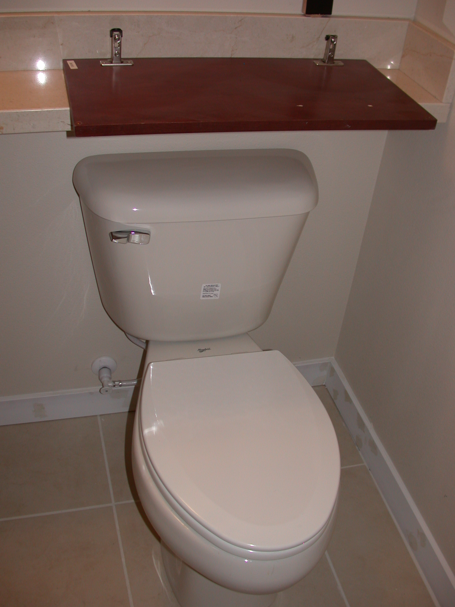 Toilet in Guest Bathroom in Moms Condominium