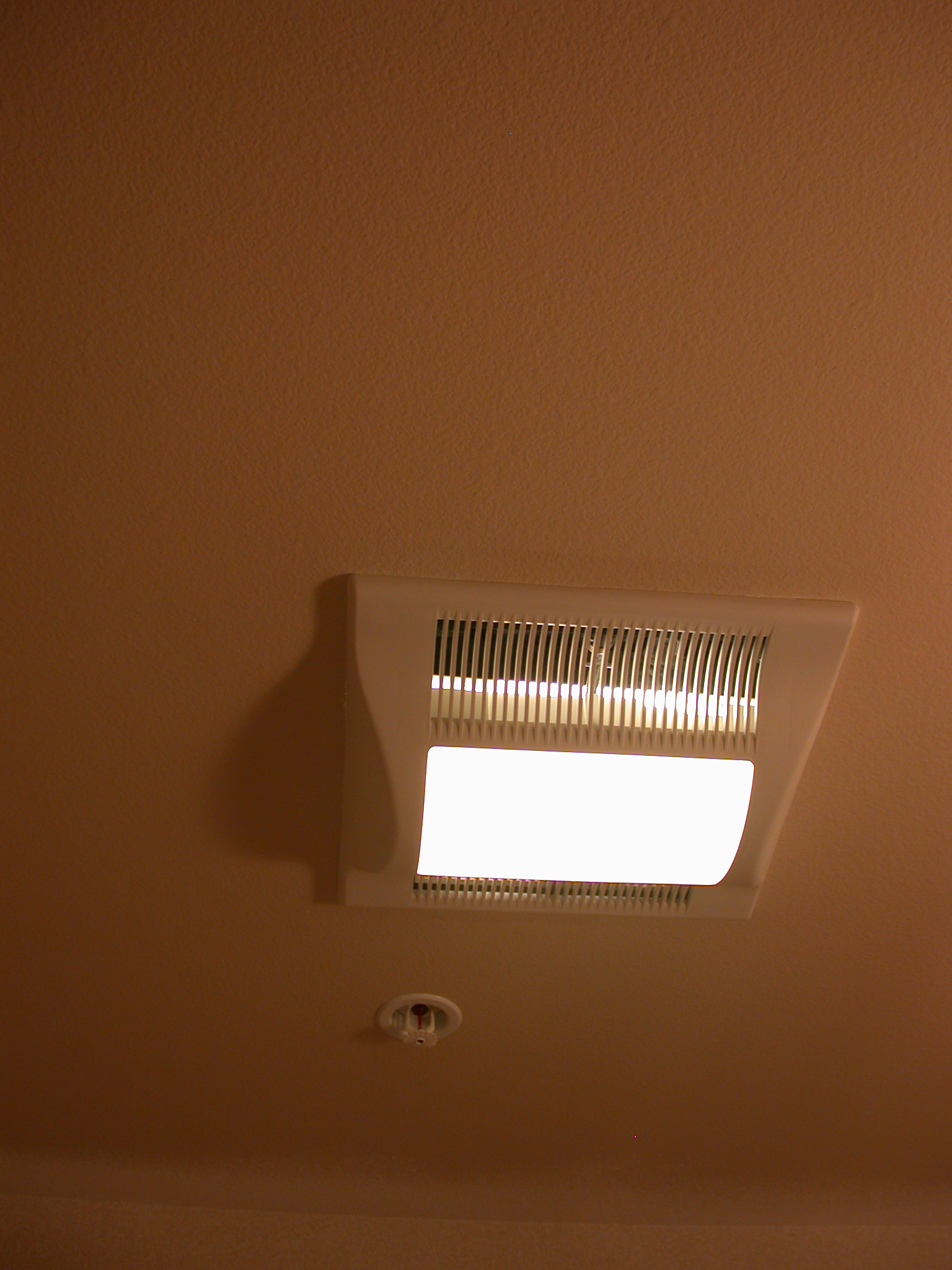 Light and Exhaust Fan in Guest Bathroom in Moms Condominium
