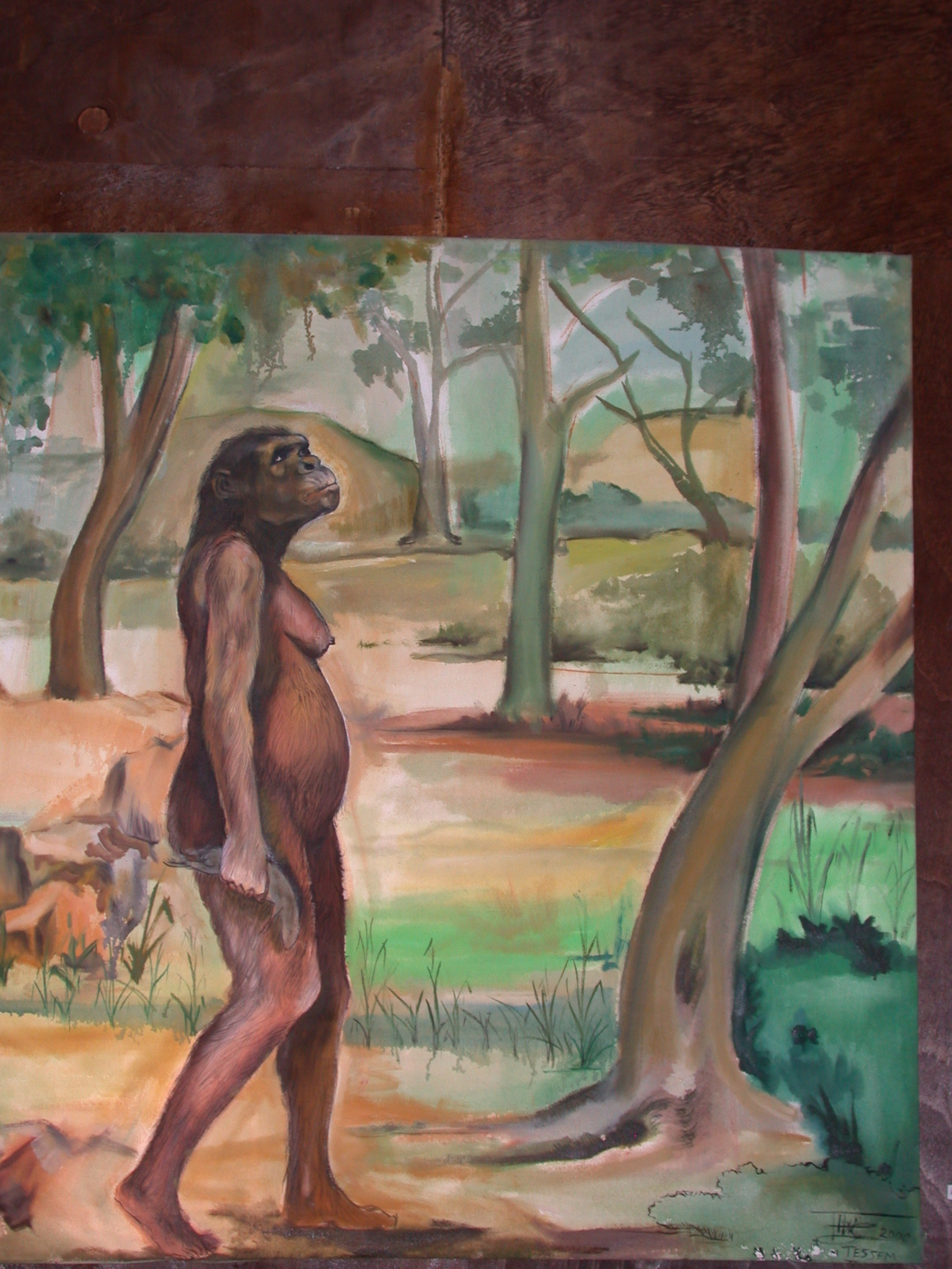 Artist Rendition of Lucy at National Museum in Addis Ababa, Ethiopia