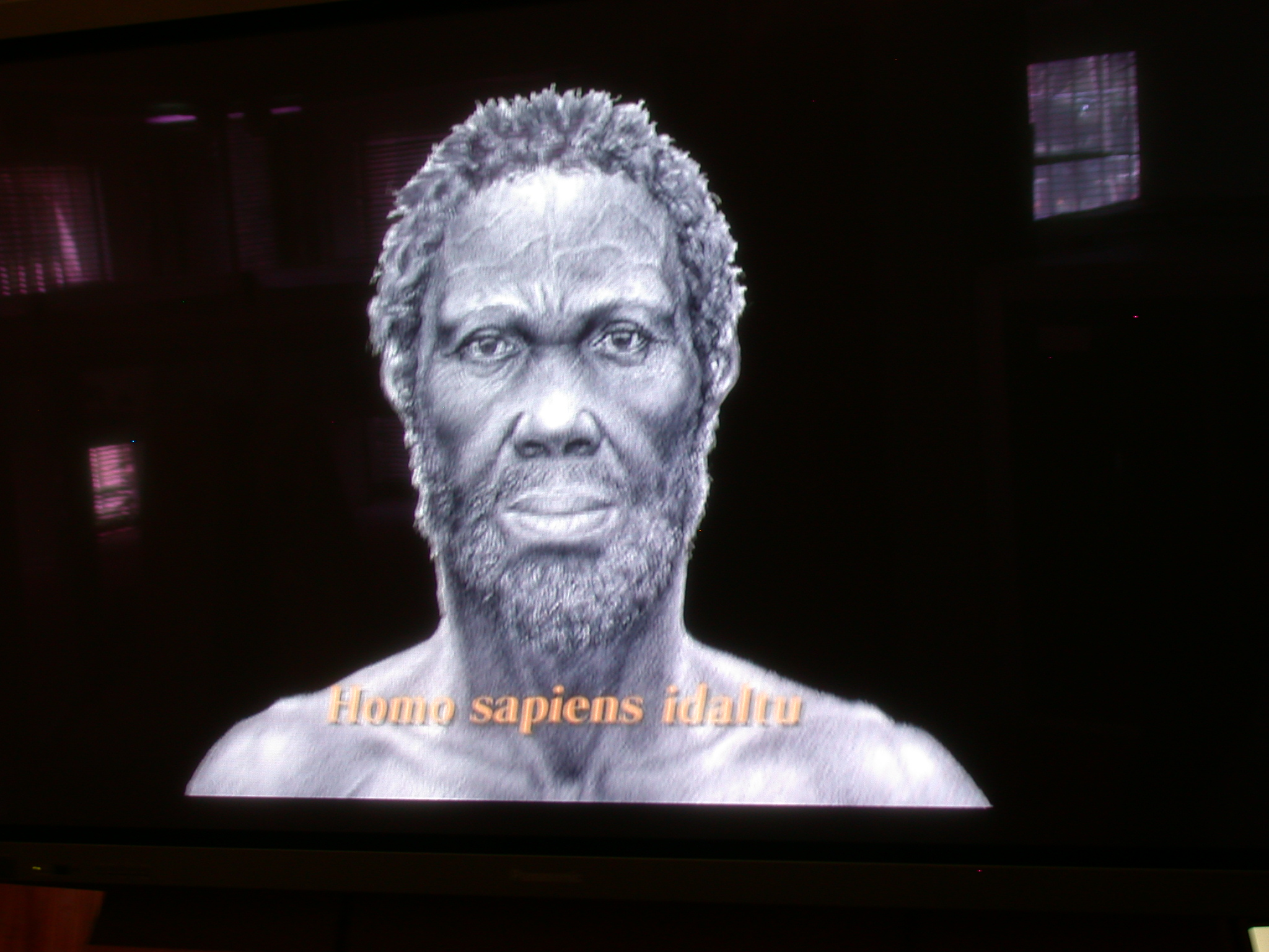Artist Rendition of Homo Sapiens Idaltu at National Museum in Addis Ababa, Ethiopia
