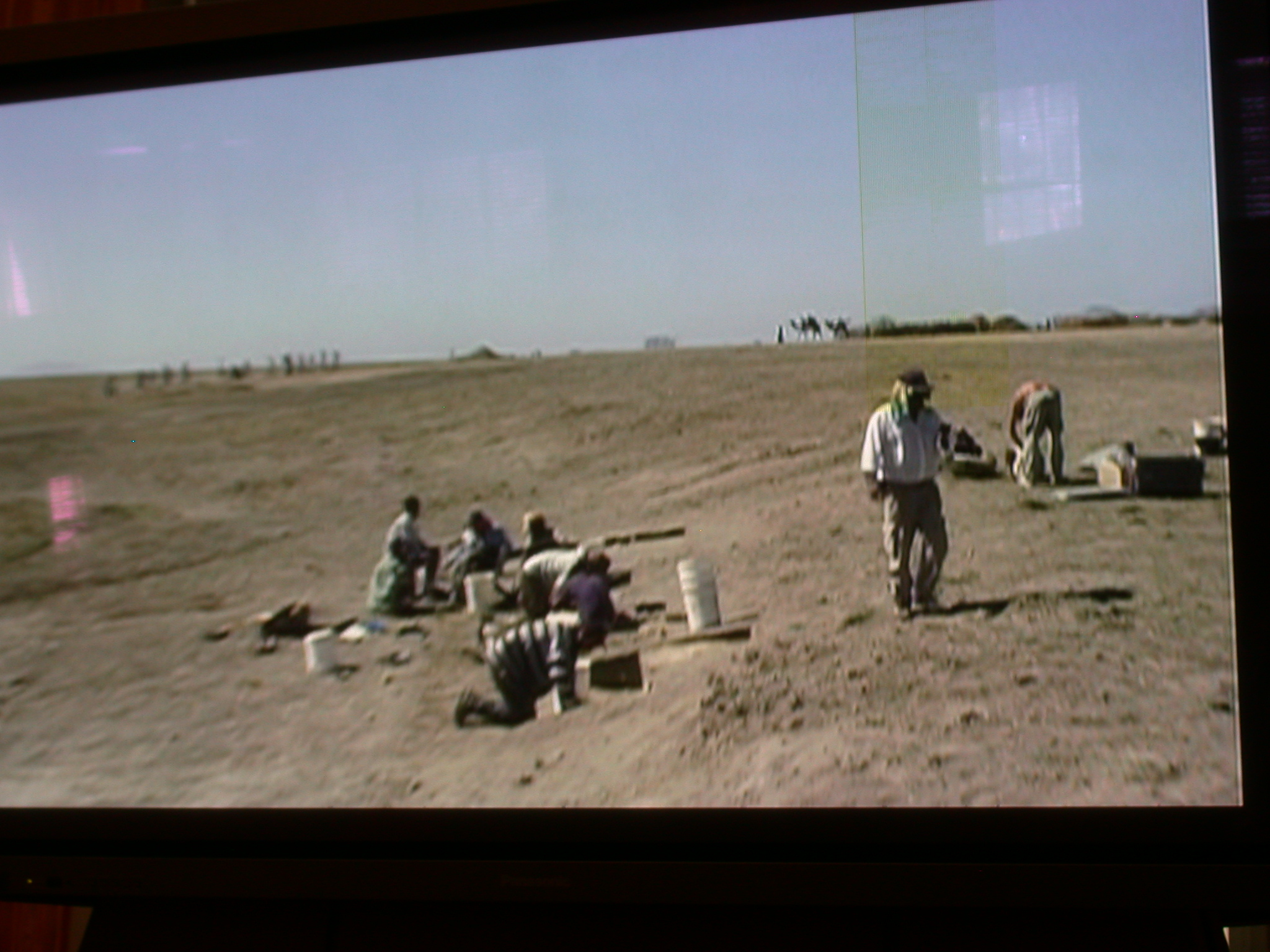 Photo of Herto Discovery Site, National Museum, Addis Ababa, Ethiopia