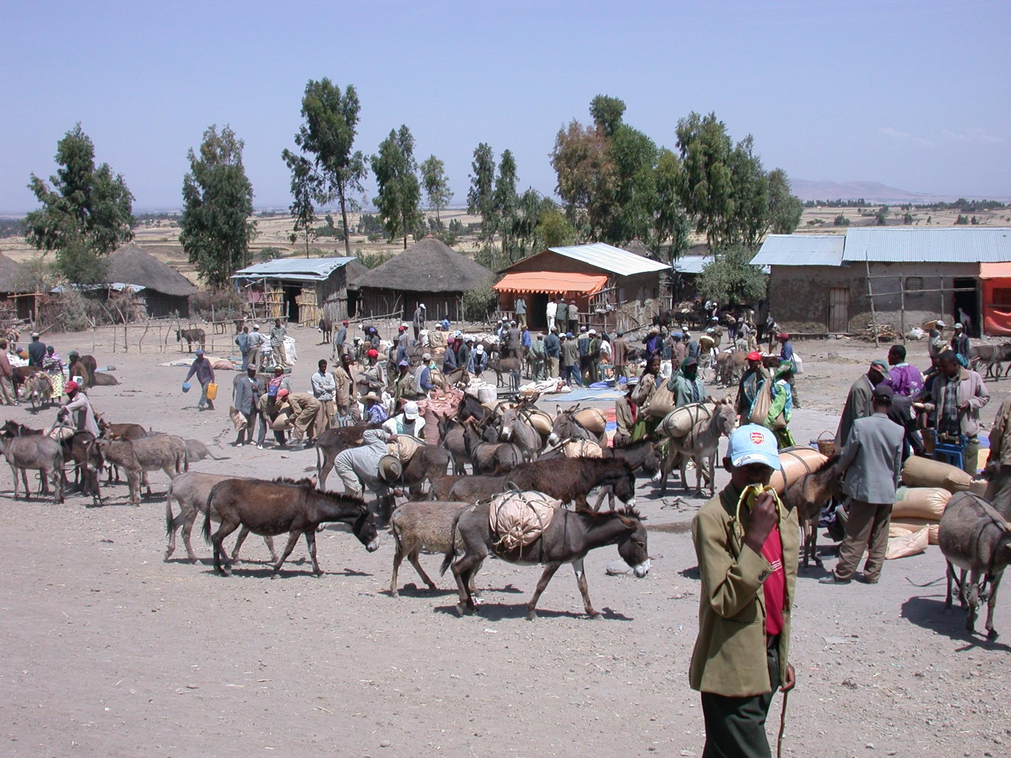 Marketplace Between Melka Kunture and Adadi Mariam Church, South of Addis Ababa, Ethiopia