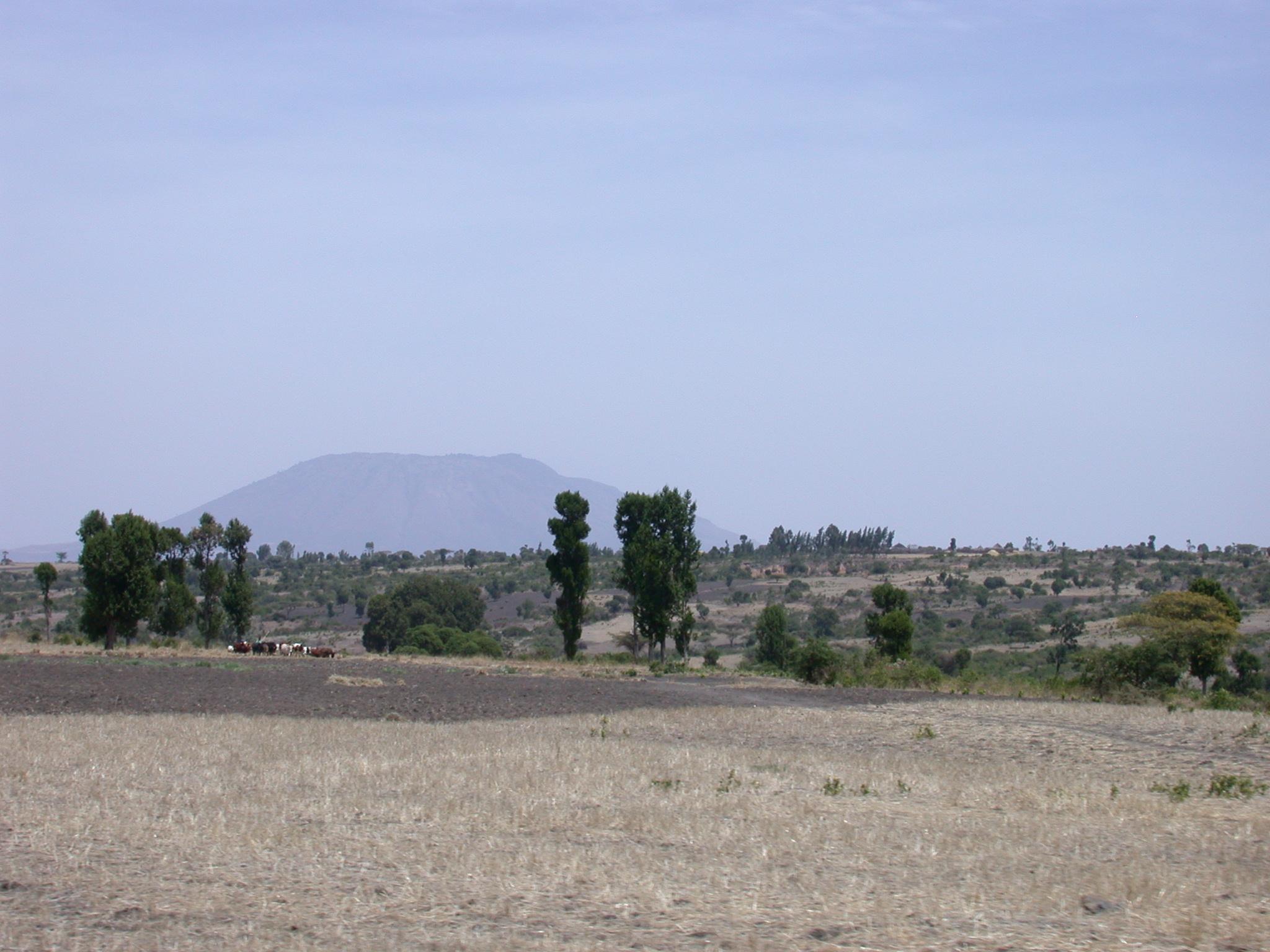 Mount Zokuala (Probably), Outside Addis Ababa, Ethiopia