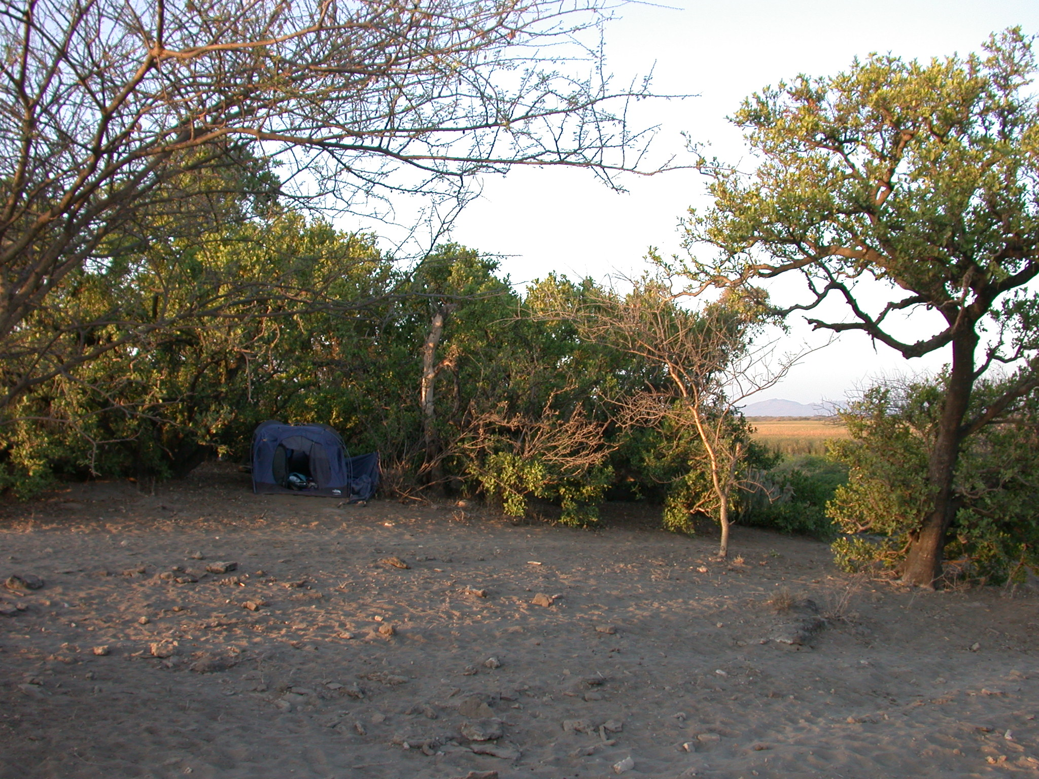 Campsite at Bilen Lodge, Afar, Awash, Ethiopia