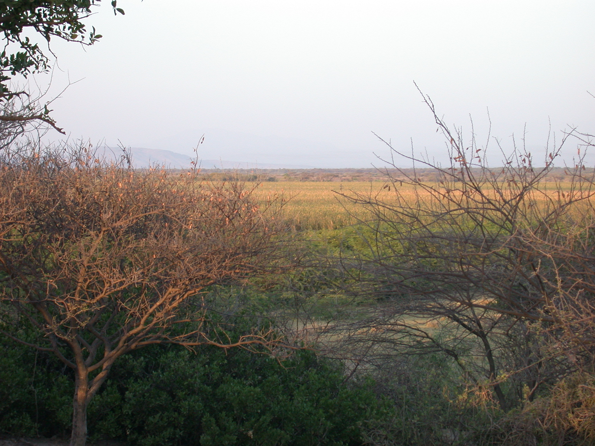 Sunrise at Bilen Lodge, Afar, Awash, Ethiopia