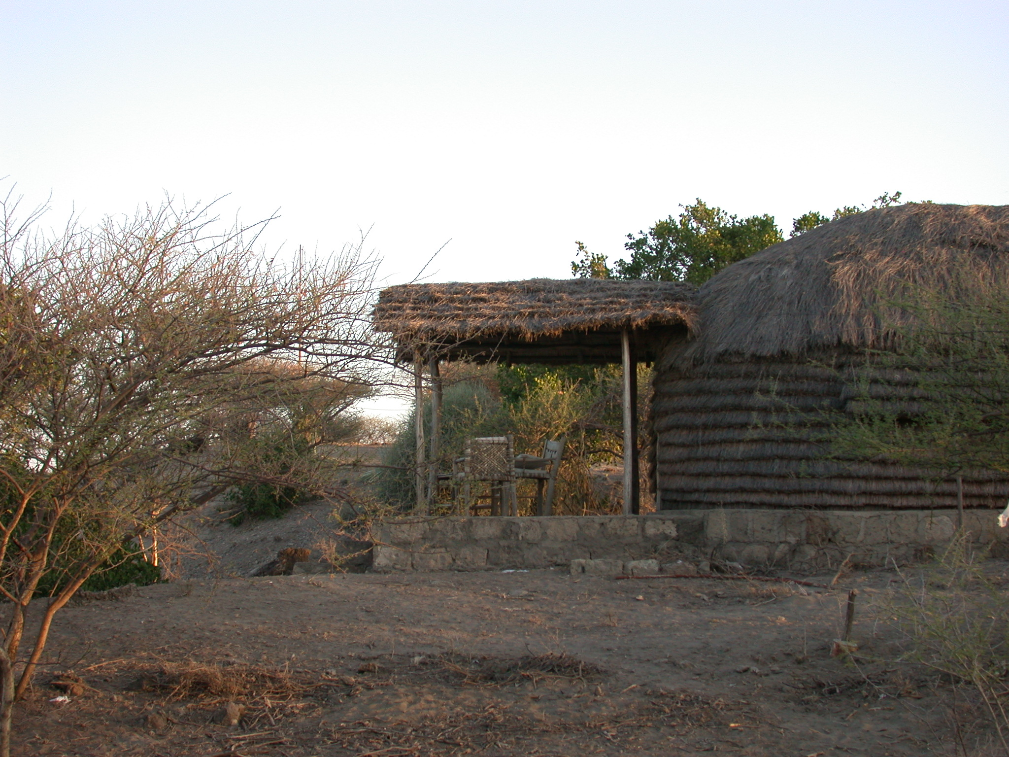 Tukul at Bilen Lodge, Afar, Awash, Ethiopia