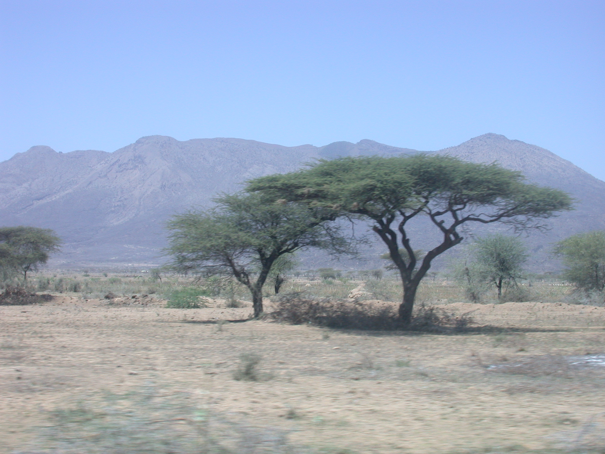 Landscape on Road From Awash Saba to Addis Ababa, Ethiopia