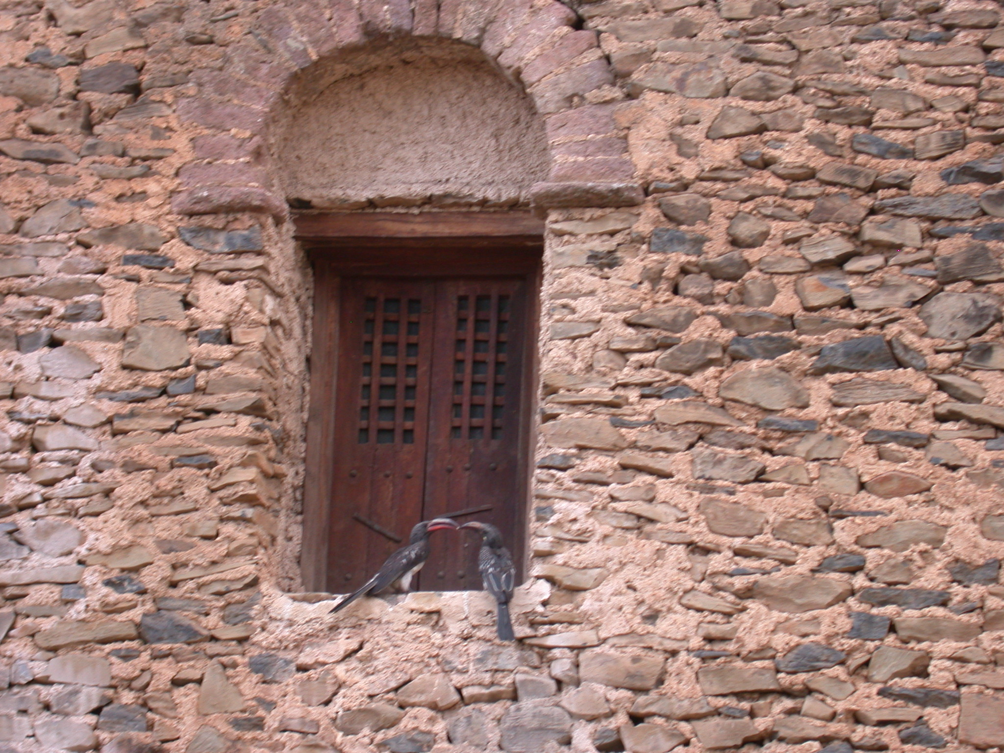 Birds Kissing on Window Ledge of Palace, Fasil Ghebbi Royal Enclosure, Gonder, Ethiopia