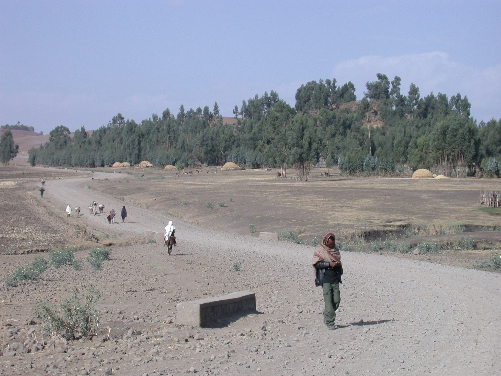 Village at Site of Bus Breakdown, Route From Gonder to Debark, Ethiopia