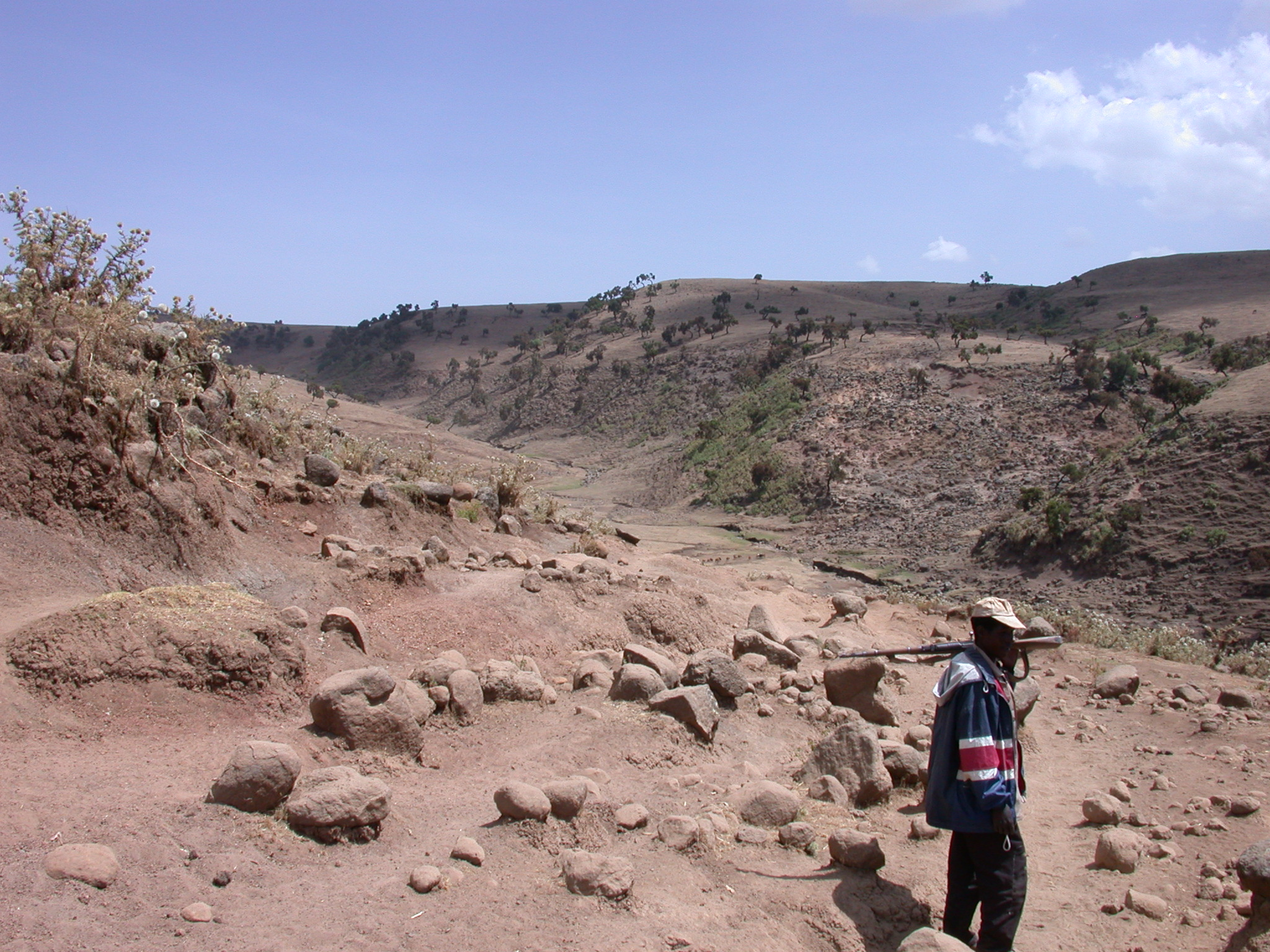 Scout on Trek from Debark to Sankaber, Simien Mountains, Ethiopia