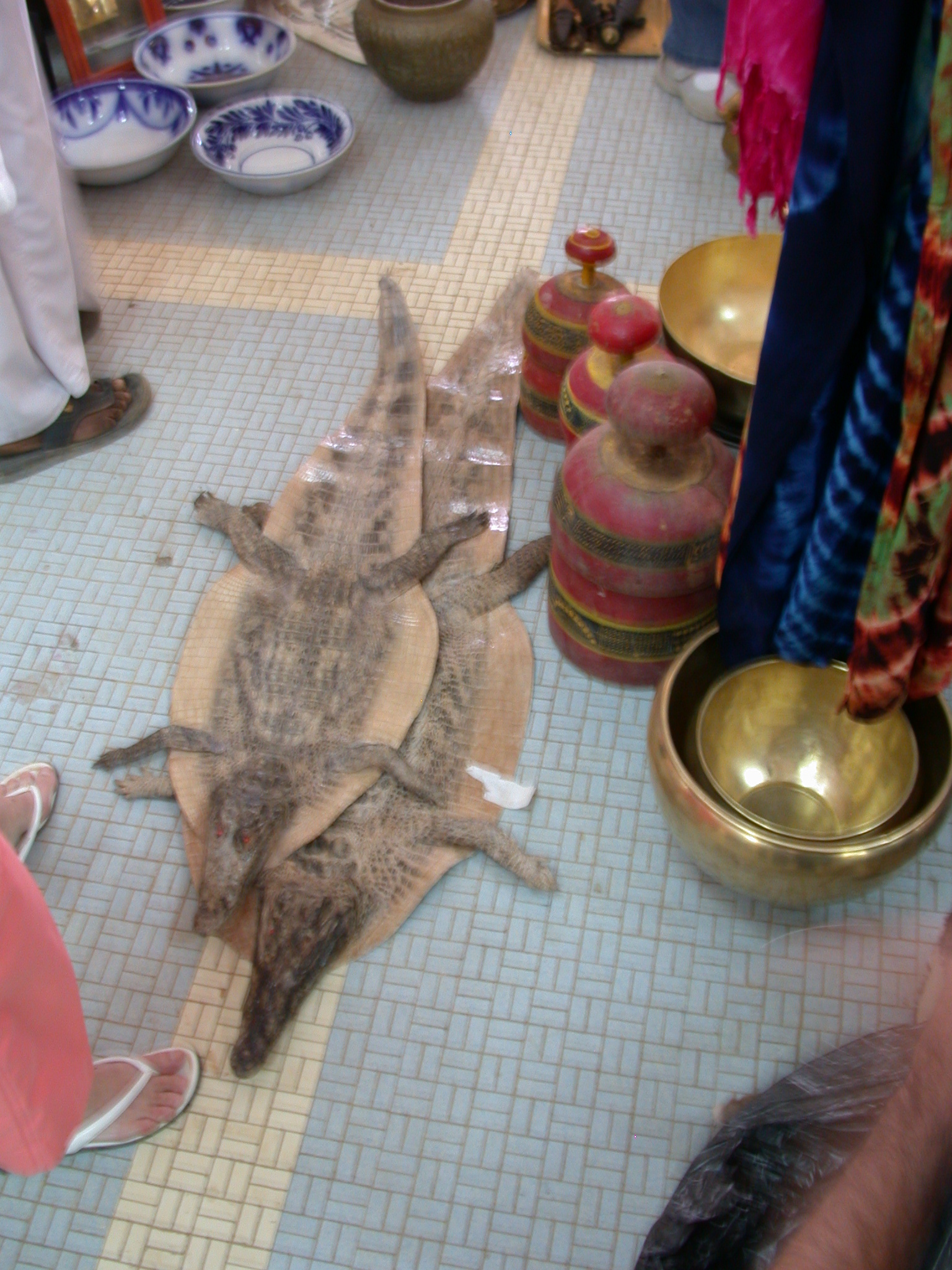 Crocodile Skins, International Charity Fair, Khartoum, Sudan