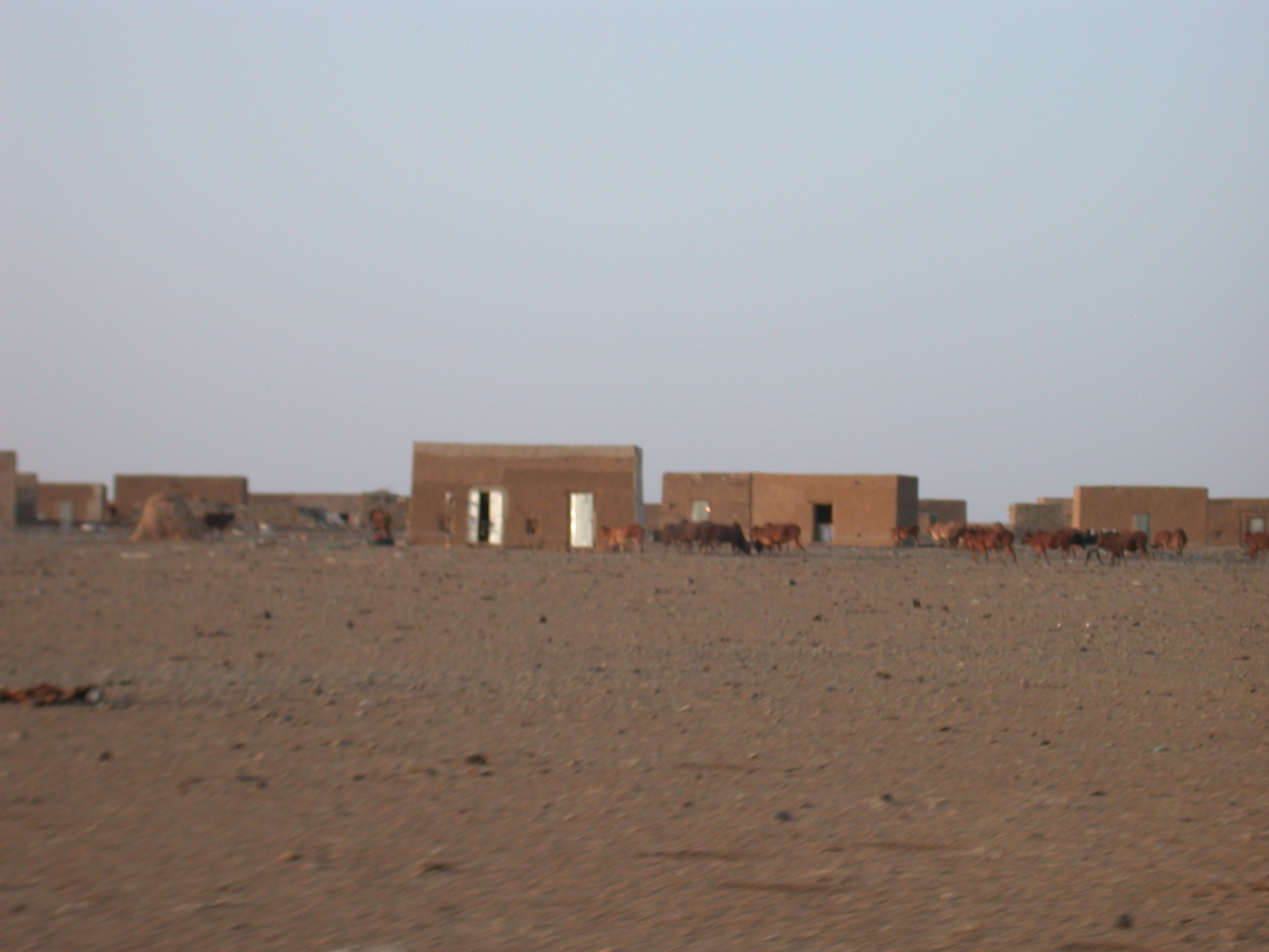 Desert on Route from Koumbi Salah to Timbedra, Mauritania