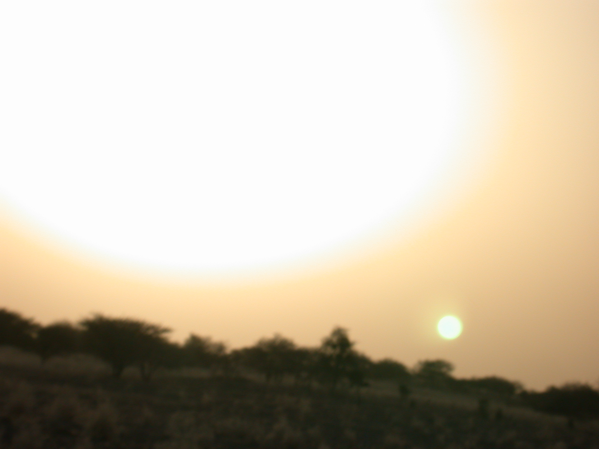 Sunrise in Desert on Route from Koumbi Salah to Timbedra, Mauritania