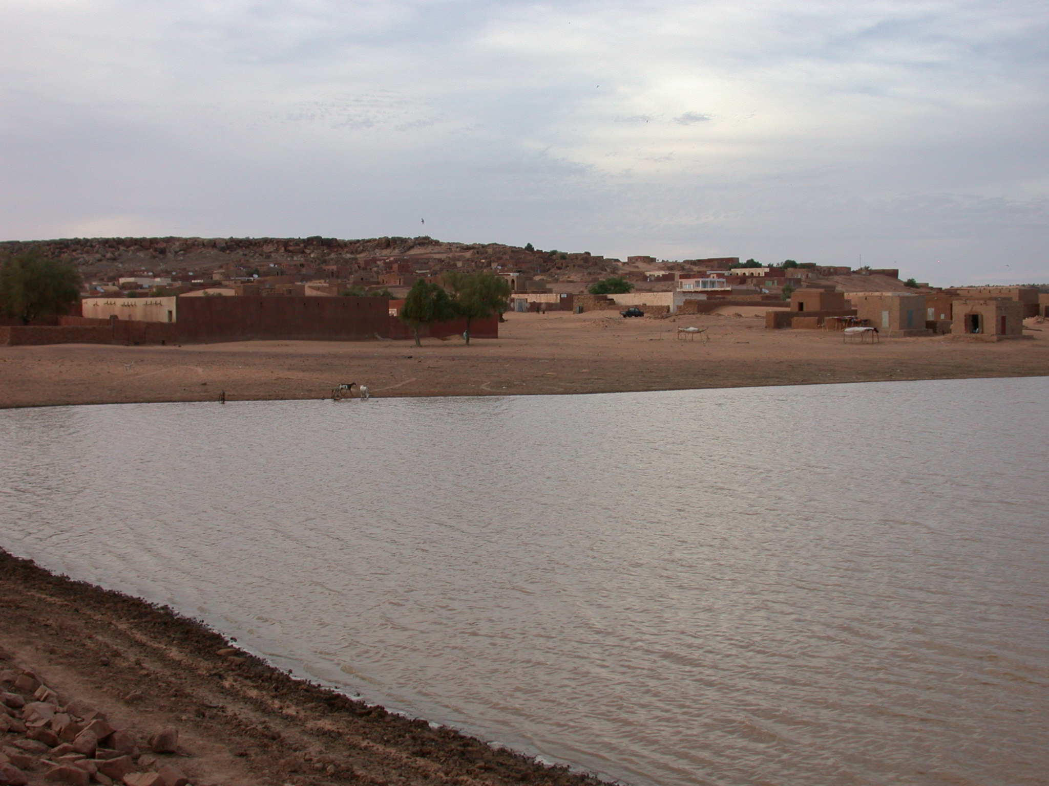 View of City From Reservoir, Oualata, Mauritania