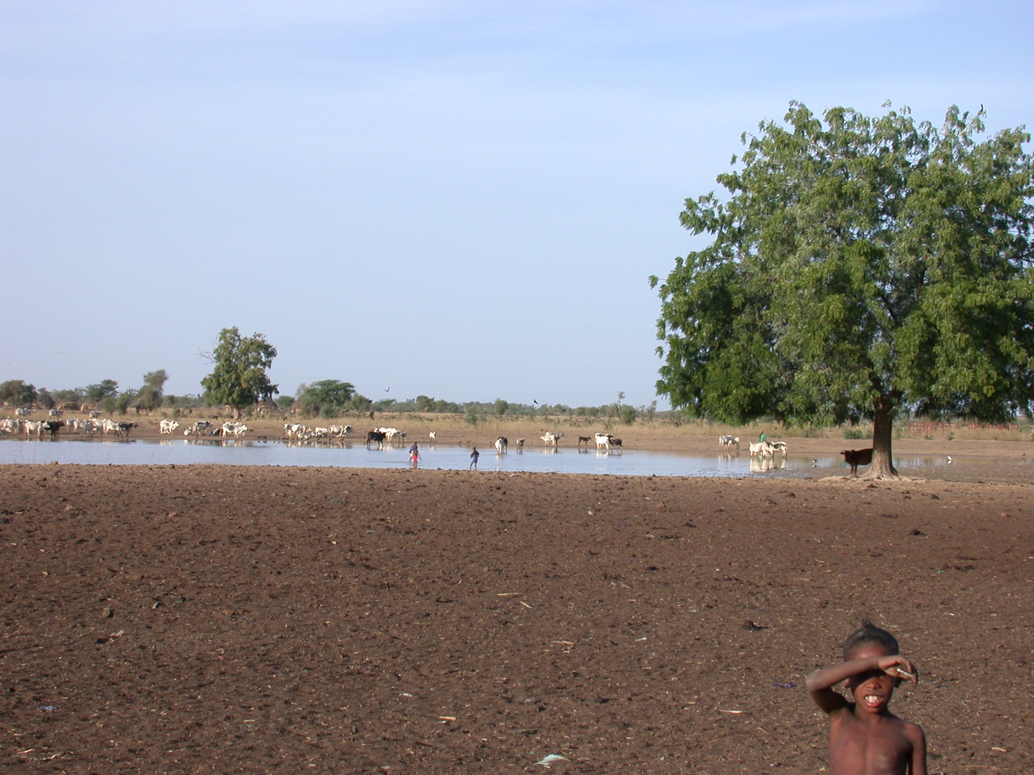 Scenery Between Nara and Sokolo, Mali