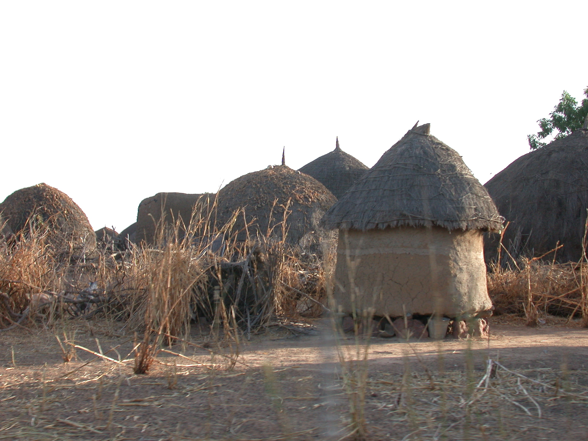 Dwellings Between Nara and Sokolo, Mali