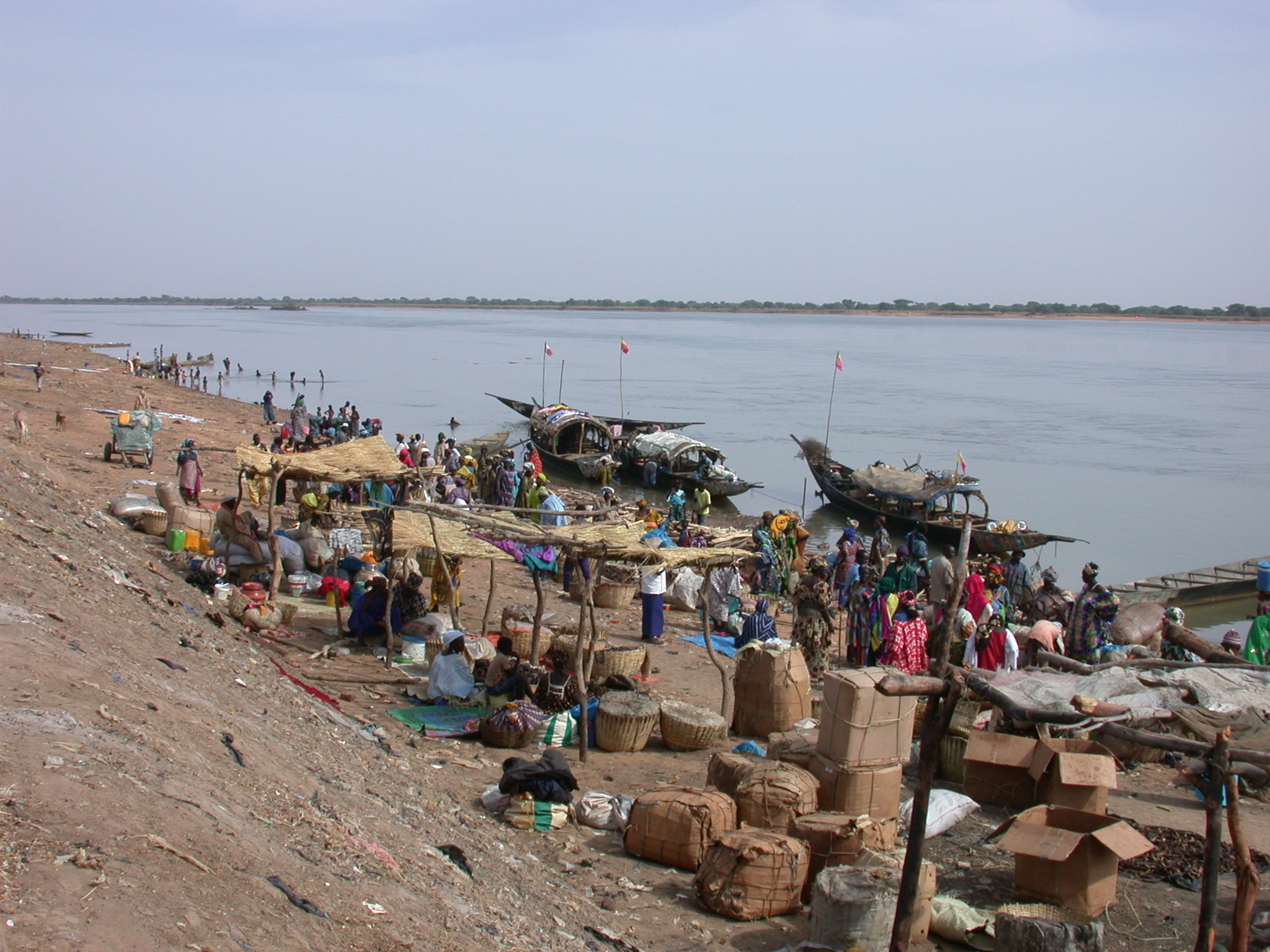 Pinasse Boats at Massina, Mali