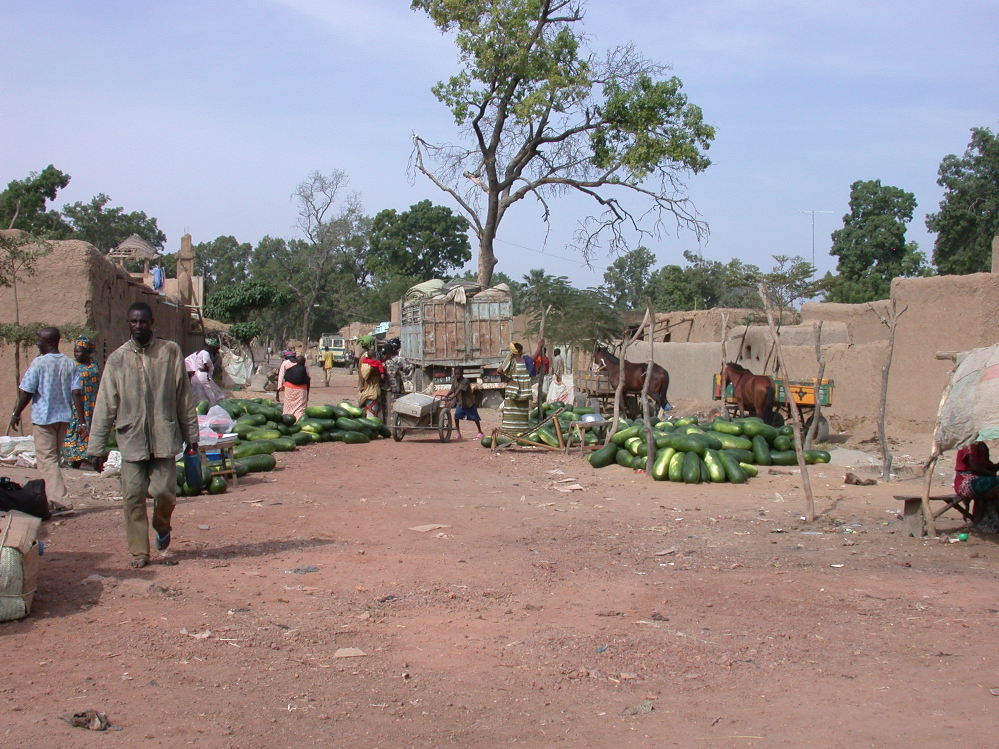 Watermelons on Sale in Massina, Mali