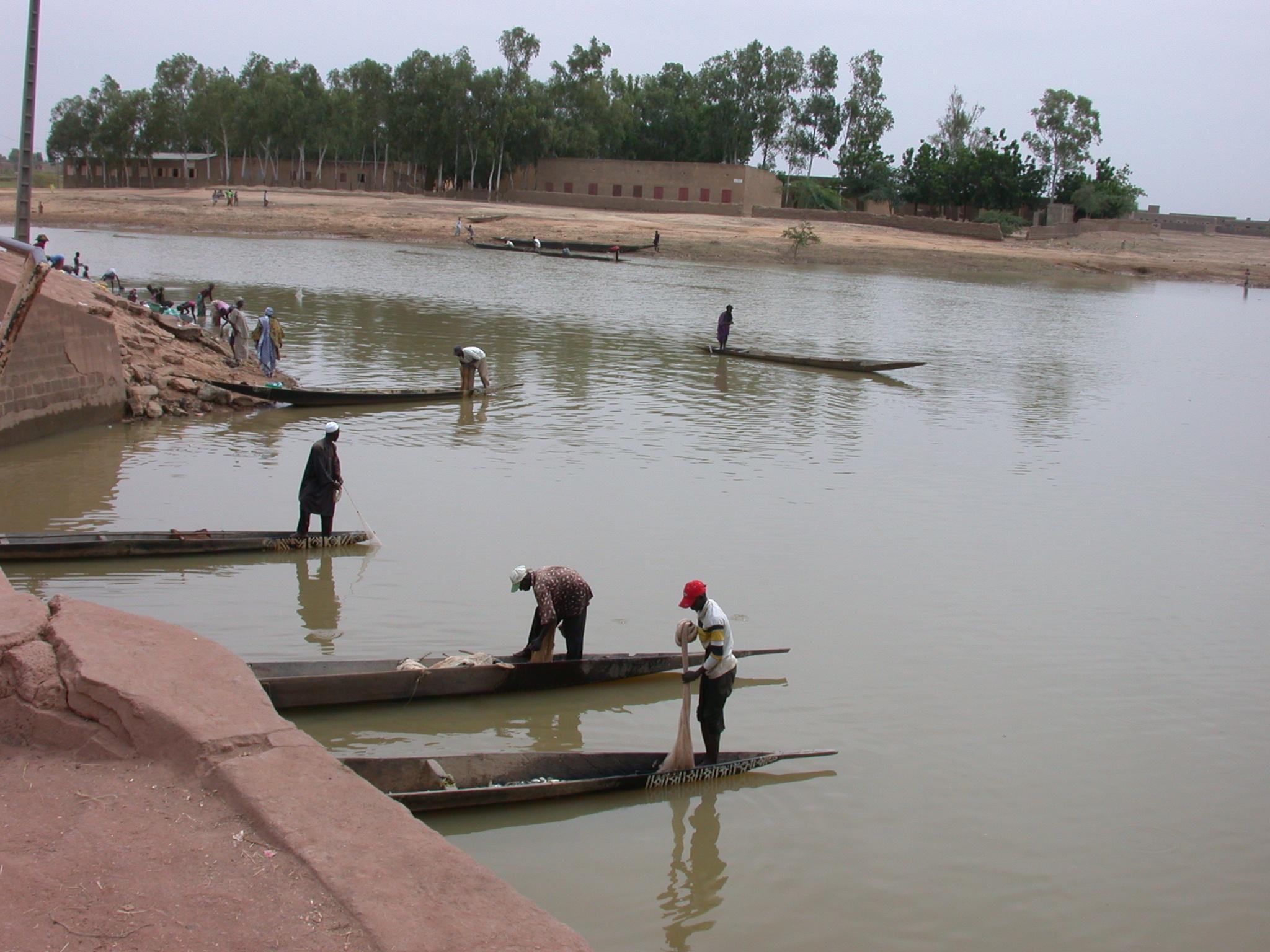 Pirogues in Jenne, Mali