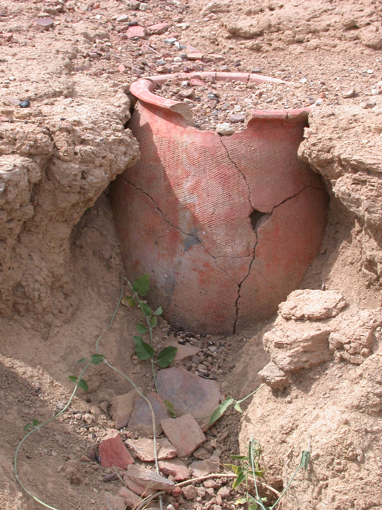 Vase Buried in Ruins of Ancient City of Jenne-Jeno, Mali