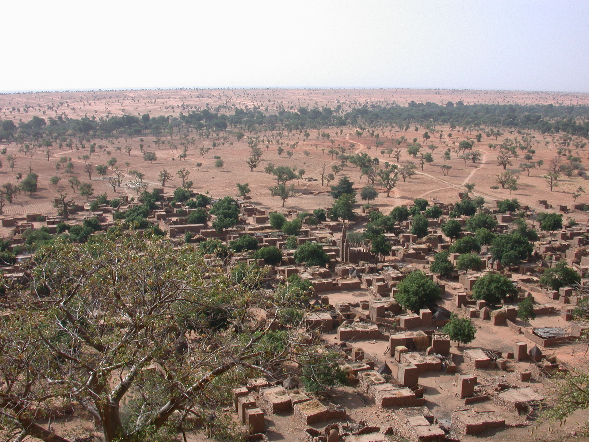 View of Village From Falaise Escarpment, Tellem Village, Dogon Country, Mali