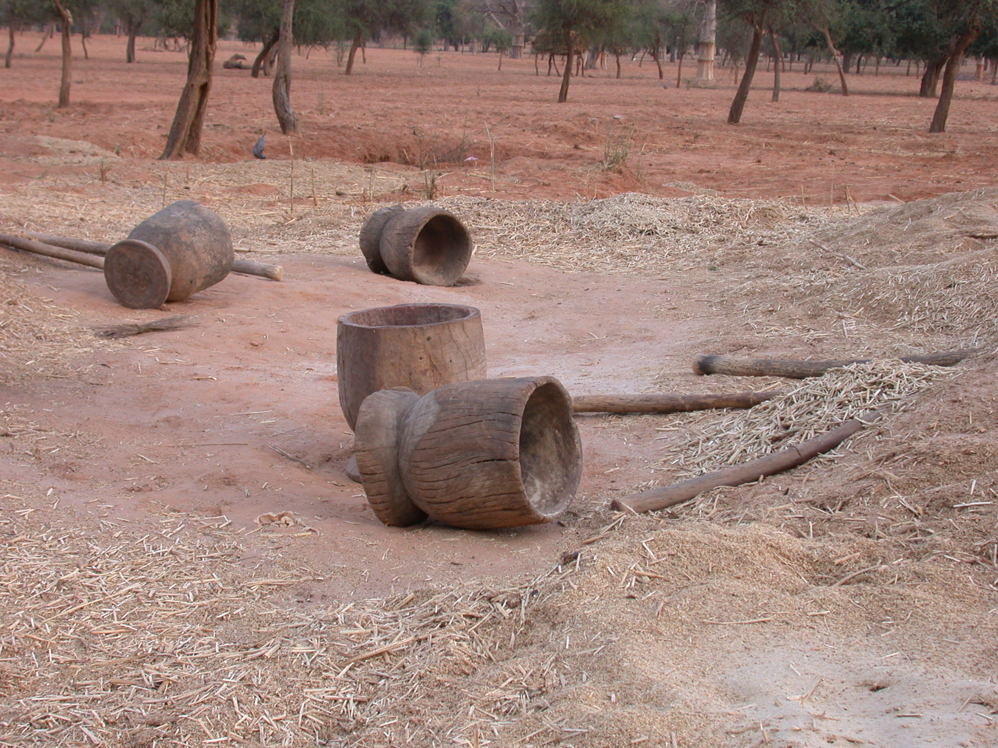 Giant Mortars and Pestles Used to Grind Grain Rhythmically in Ennde Village, Dogon Country, Mali