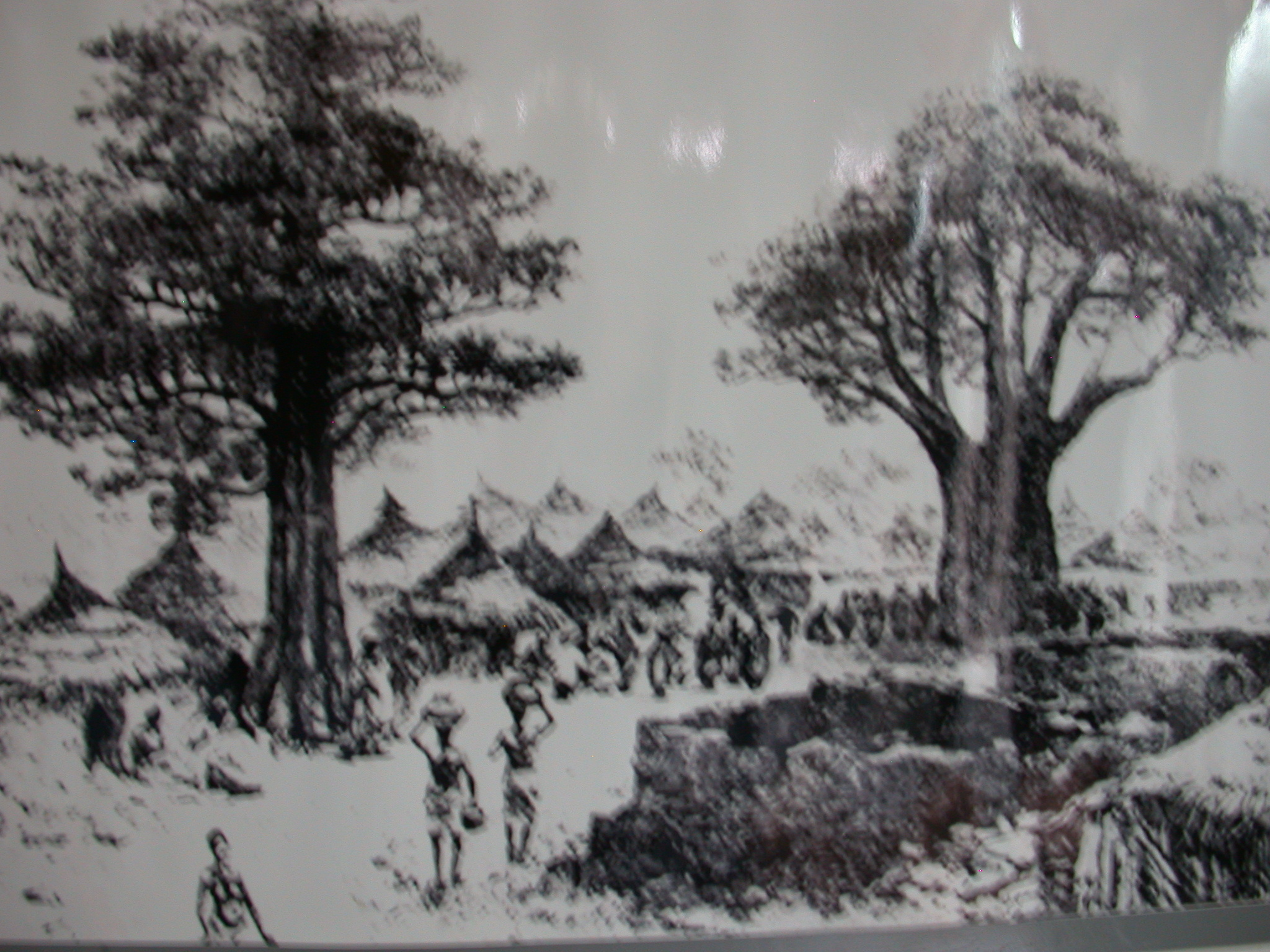 Picture of Slave Market at Baobab Tree in Salaga Circa 1888, National Museum, Accra, Ghana