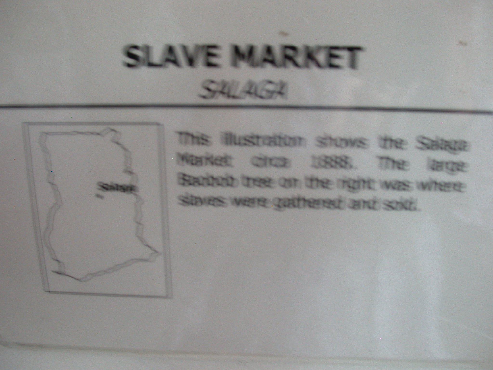 Label for Picture of Slave Market at Baobab Tree in Salaga Circa 1888, National Museum, Accra, Ghana