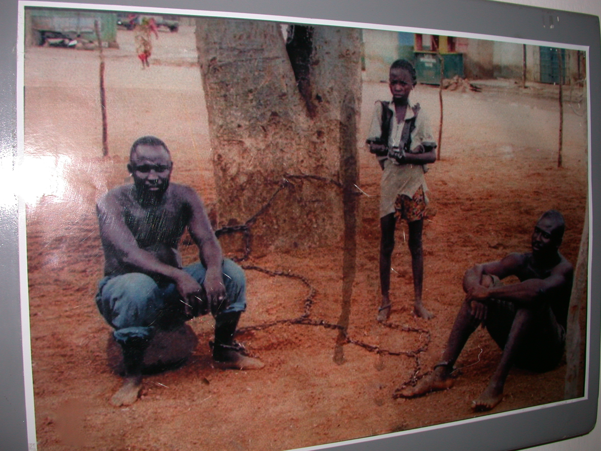 Picture Demonstrating Slaves Shackled to Trees in Salaga Market, National Museum, Accra, Ghana