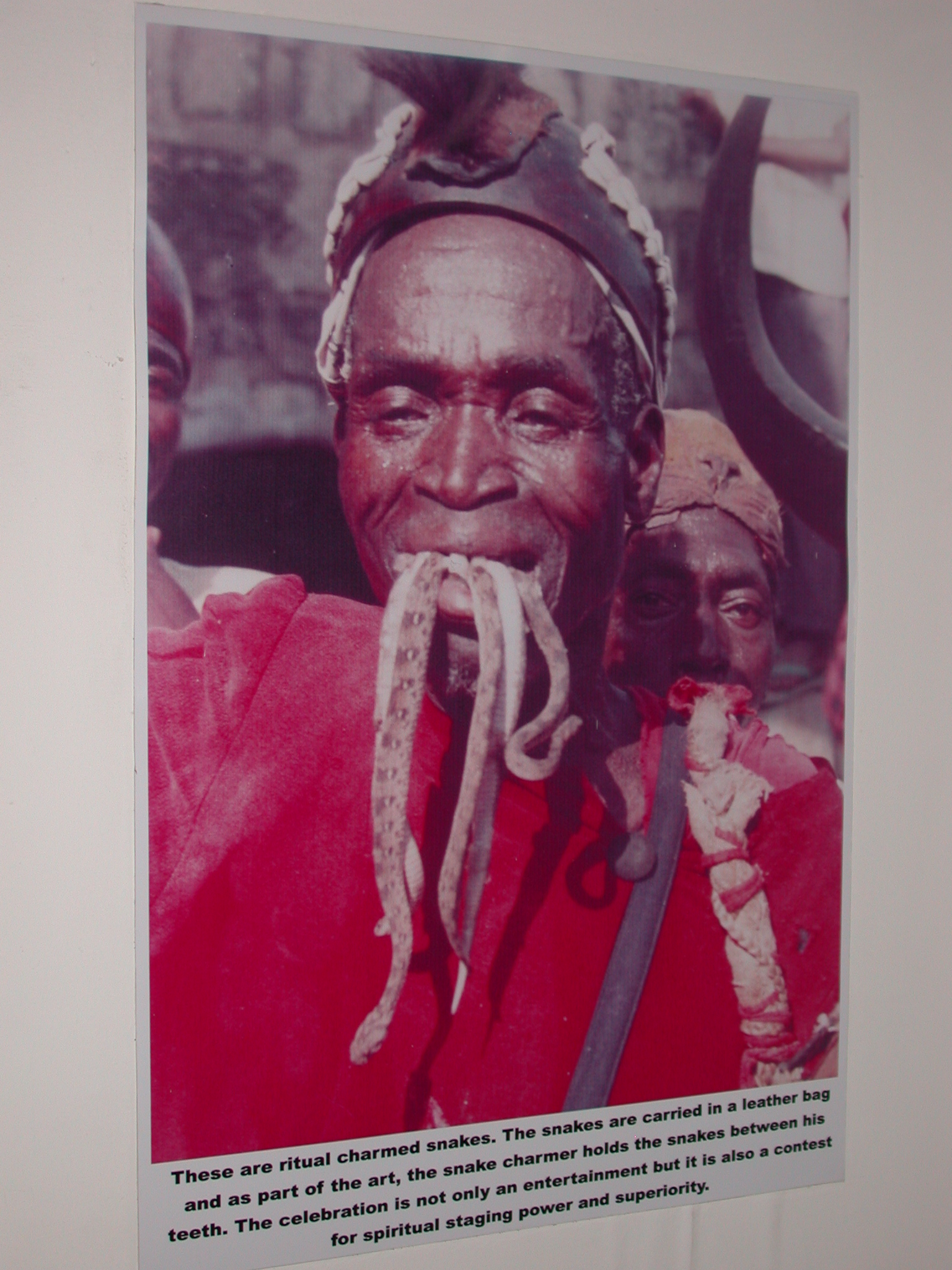 Picture of Snake Charmer, National Museum, Accra, Ghana