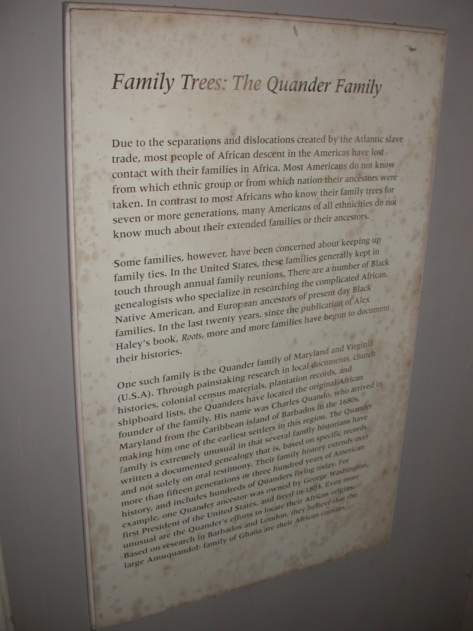 African Slave Family Tree Description, Cape Coast Slave Fort Museum, Cape Coast, Ghana