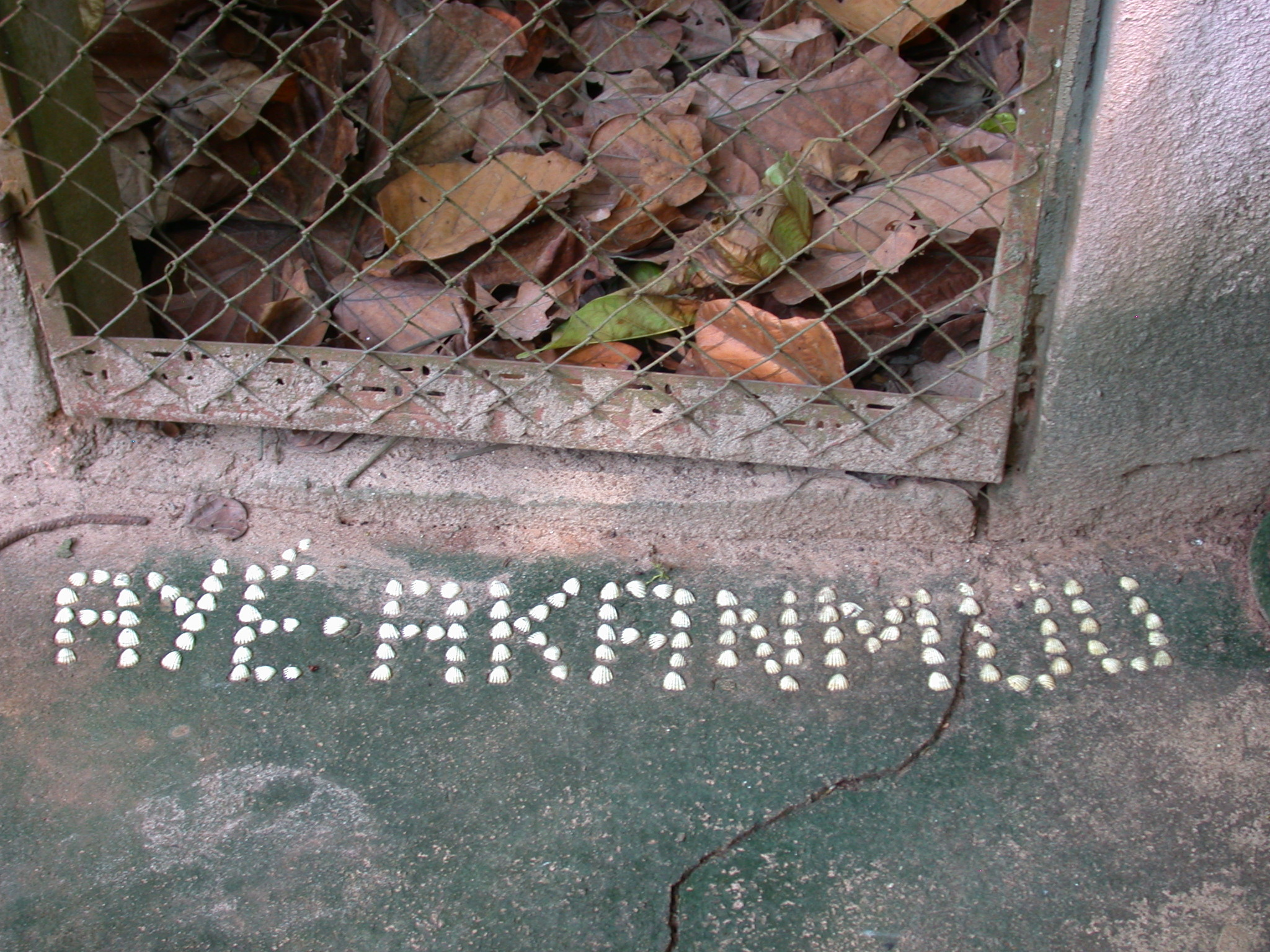 Aye-Akanmuu Label at Python Enclosure, Kpasse Sacred Forest, Ouidah, Benin