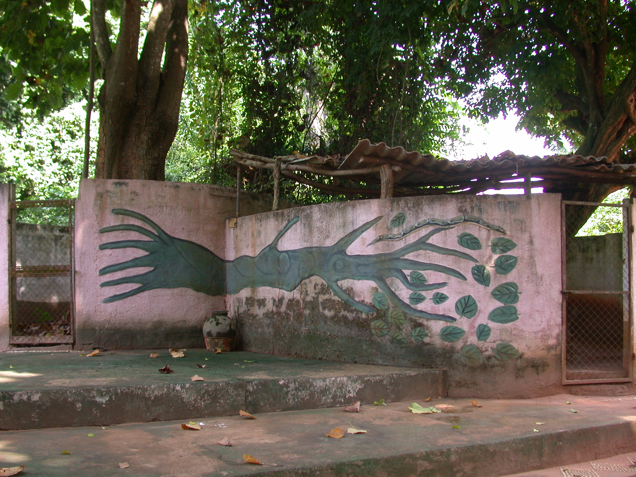 Another View of Python Enclosure, Kpasse Sacred Forest, Ouidah, Benin