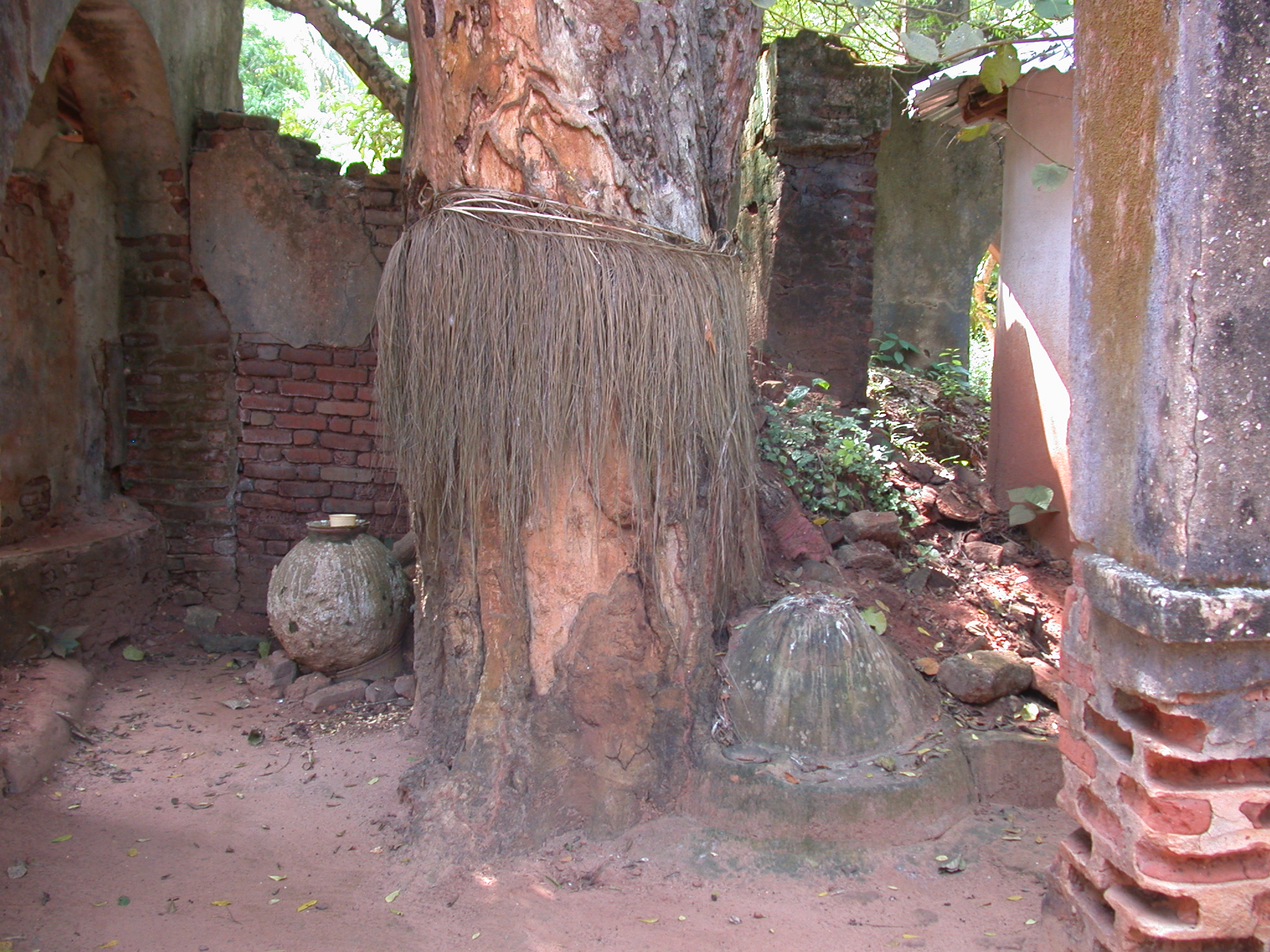Shrine at Iroko Tree Said to Be King Kpasse, Kpasse Sacred Forest, Ouidah, Benin