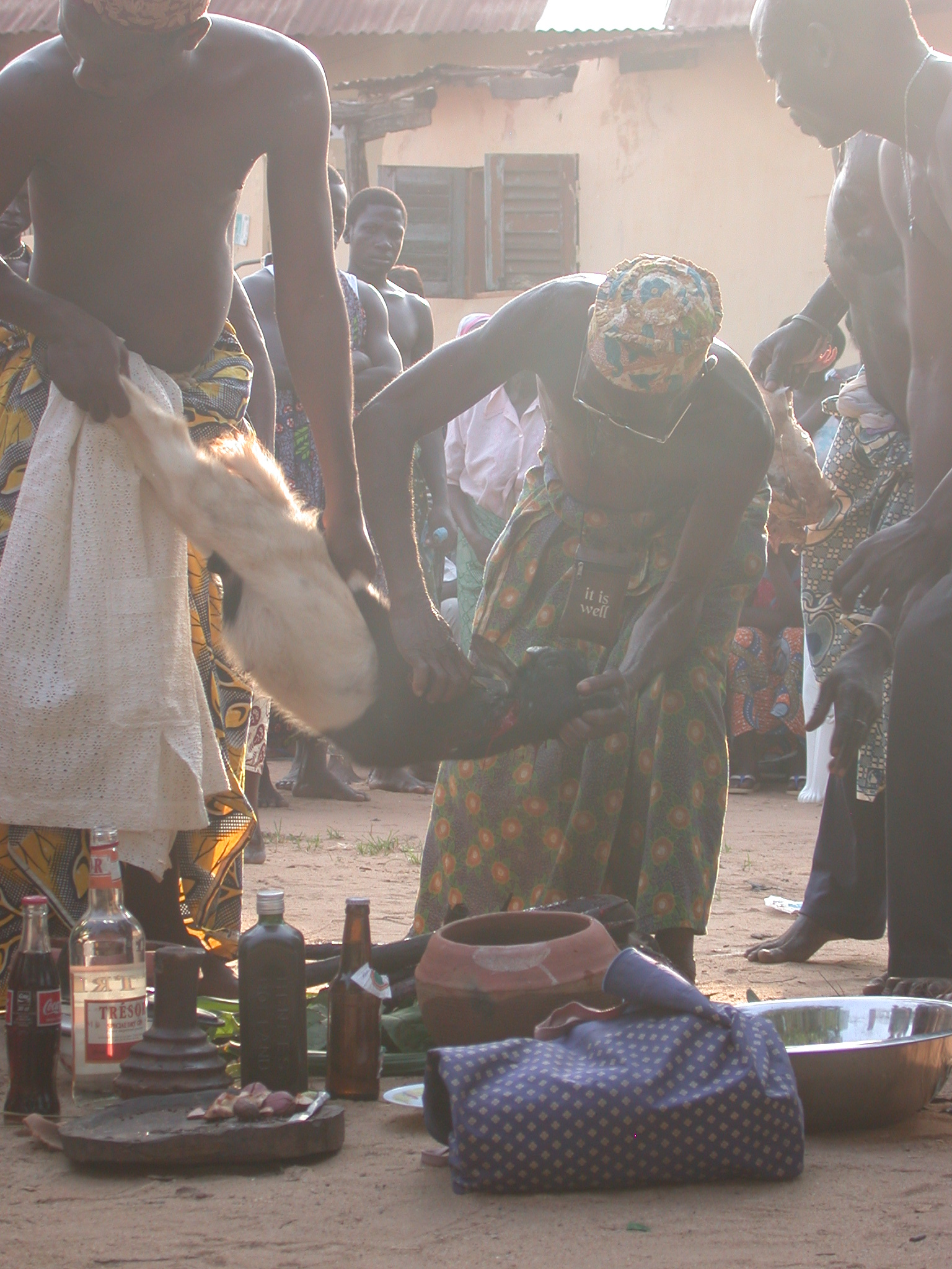 Finishing Draining of Sacrifical Goat Blood, Vodun Ritual, Ouidah, Benin