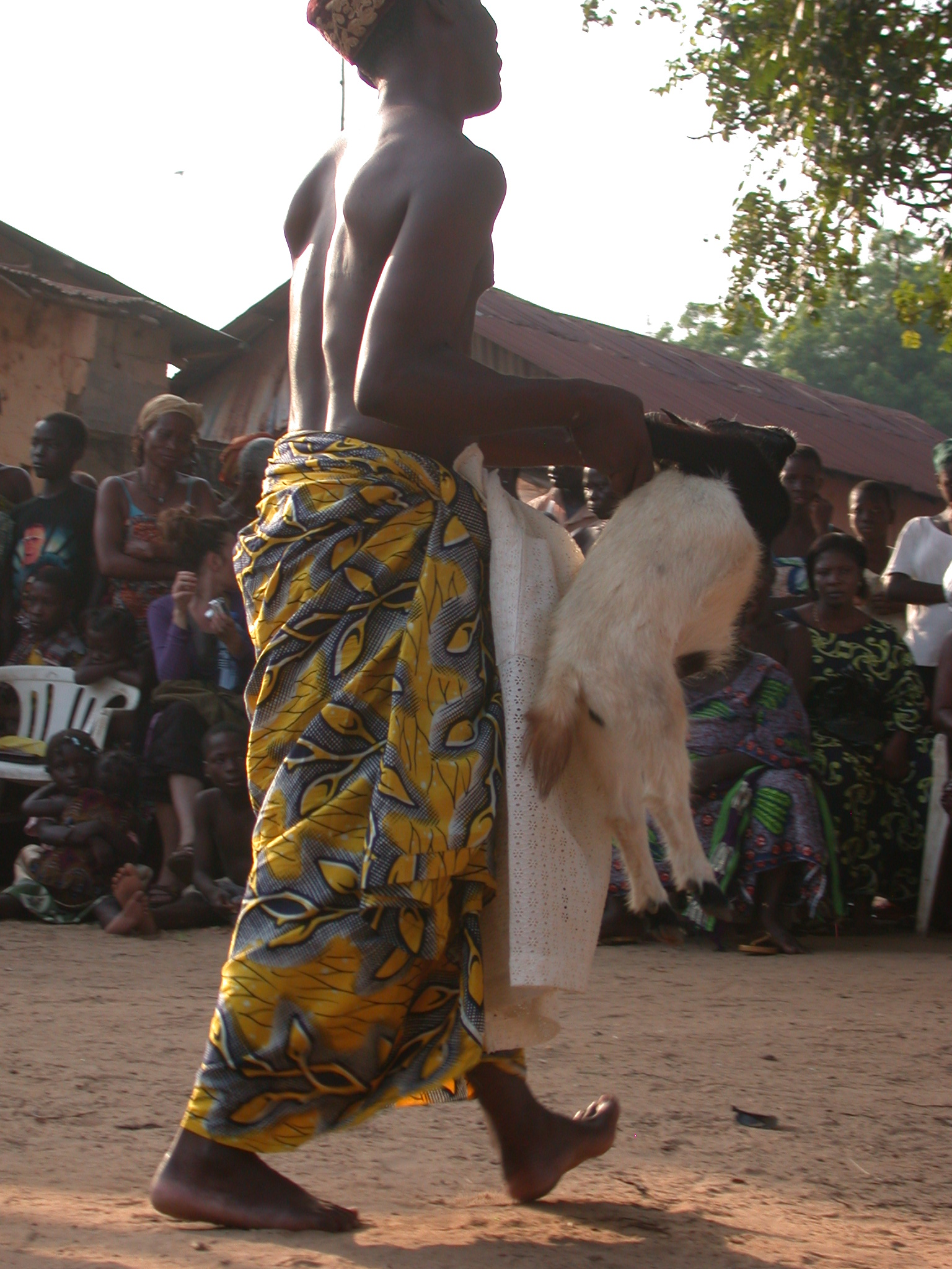 Disposing of Sacrificial Goat, Vodun Ritual, Ouidah, Benin