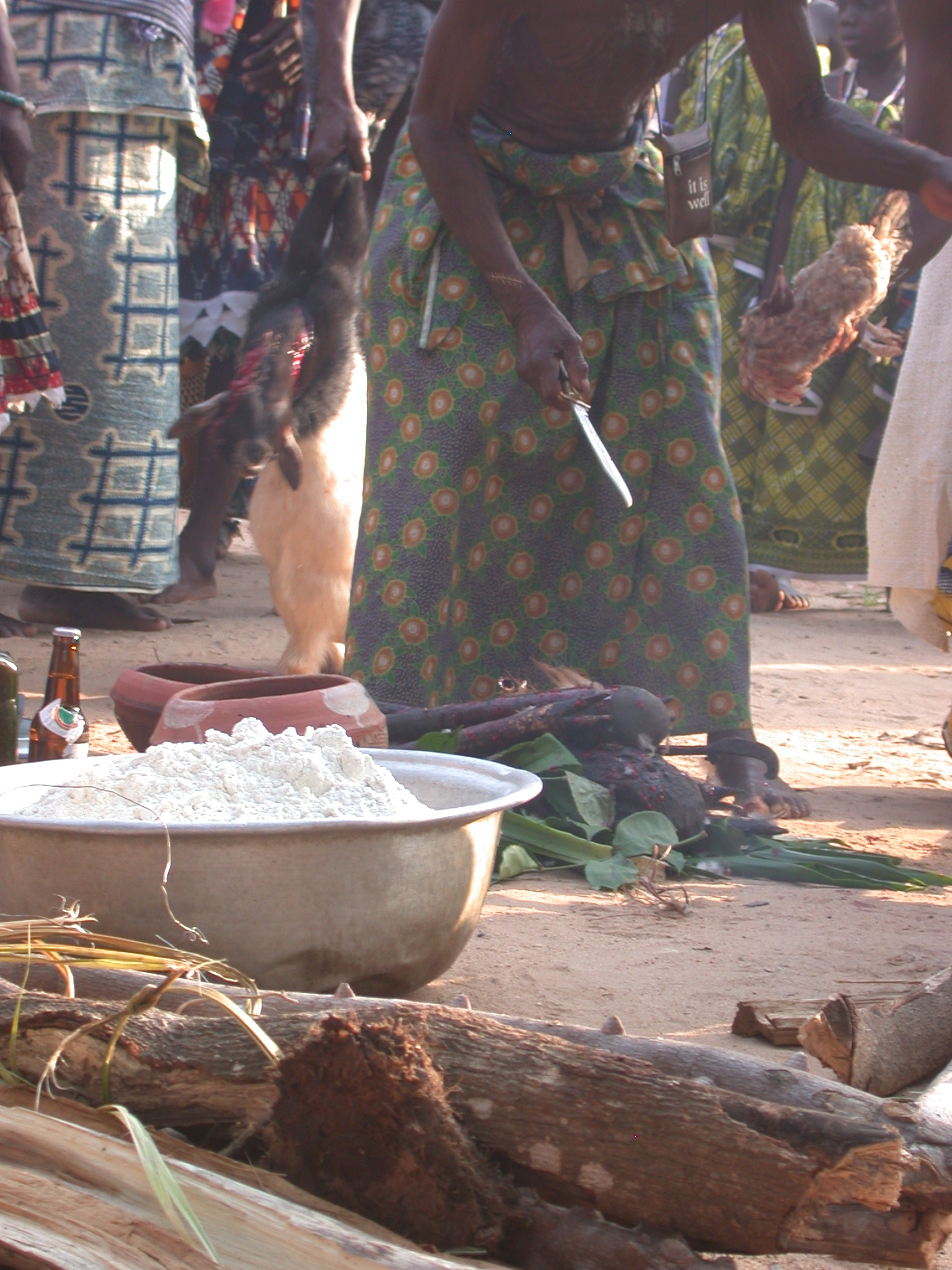 Adding a Cat or Rabbit and a Chicken to the Sacrifice, Vodun Ritual, Ouidah, Benin