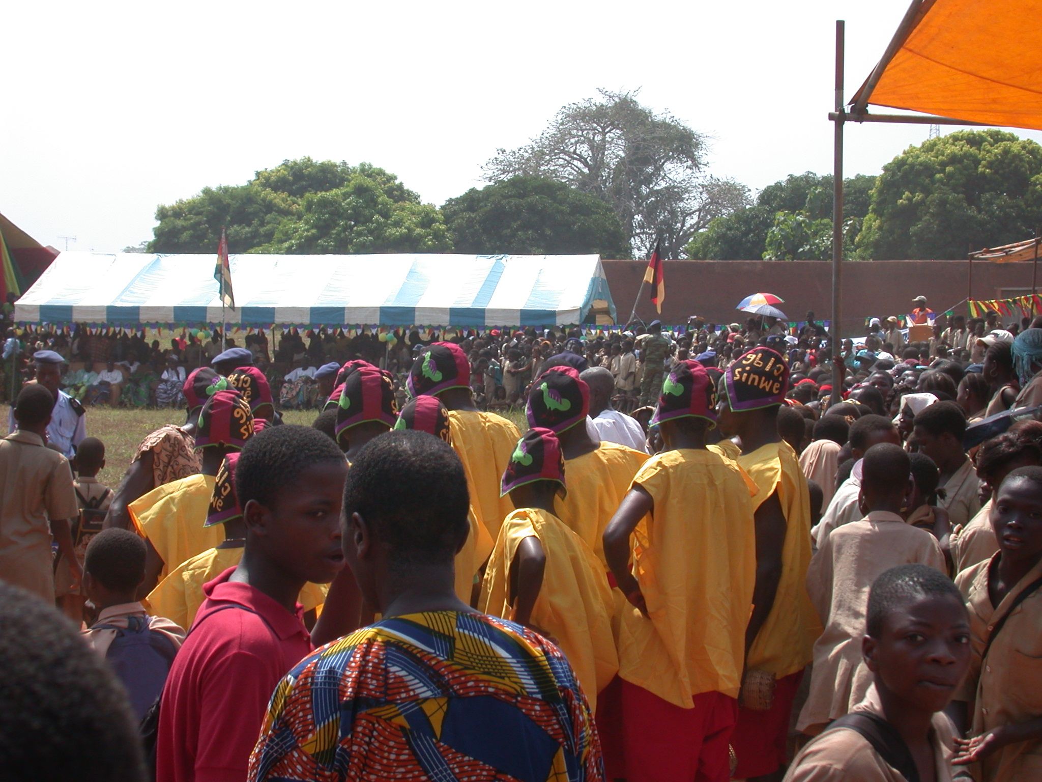 Organized Troup in Crowd, Danxome Festival Celebrations at Palace Grounds, Abomey History Museum, Abomey, Benin