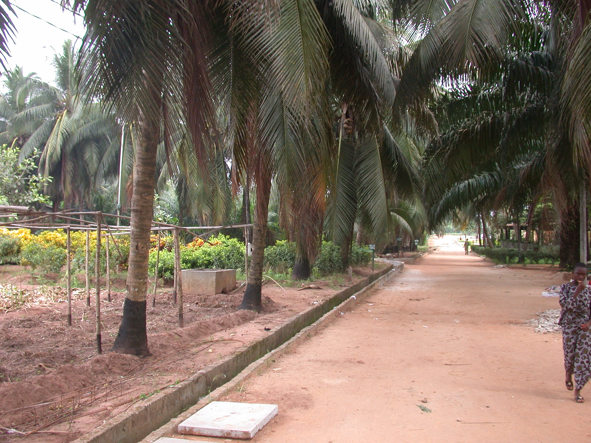 Grounds of Centre Songhaï, Porto Novo, Benin
